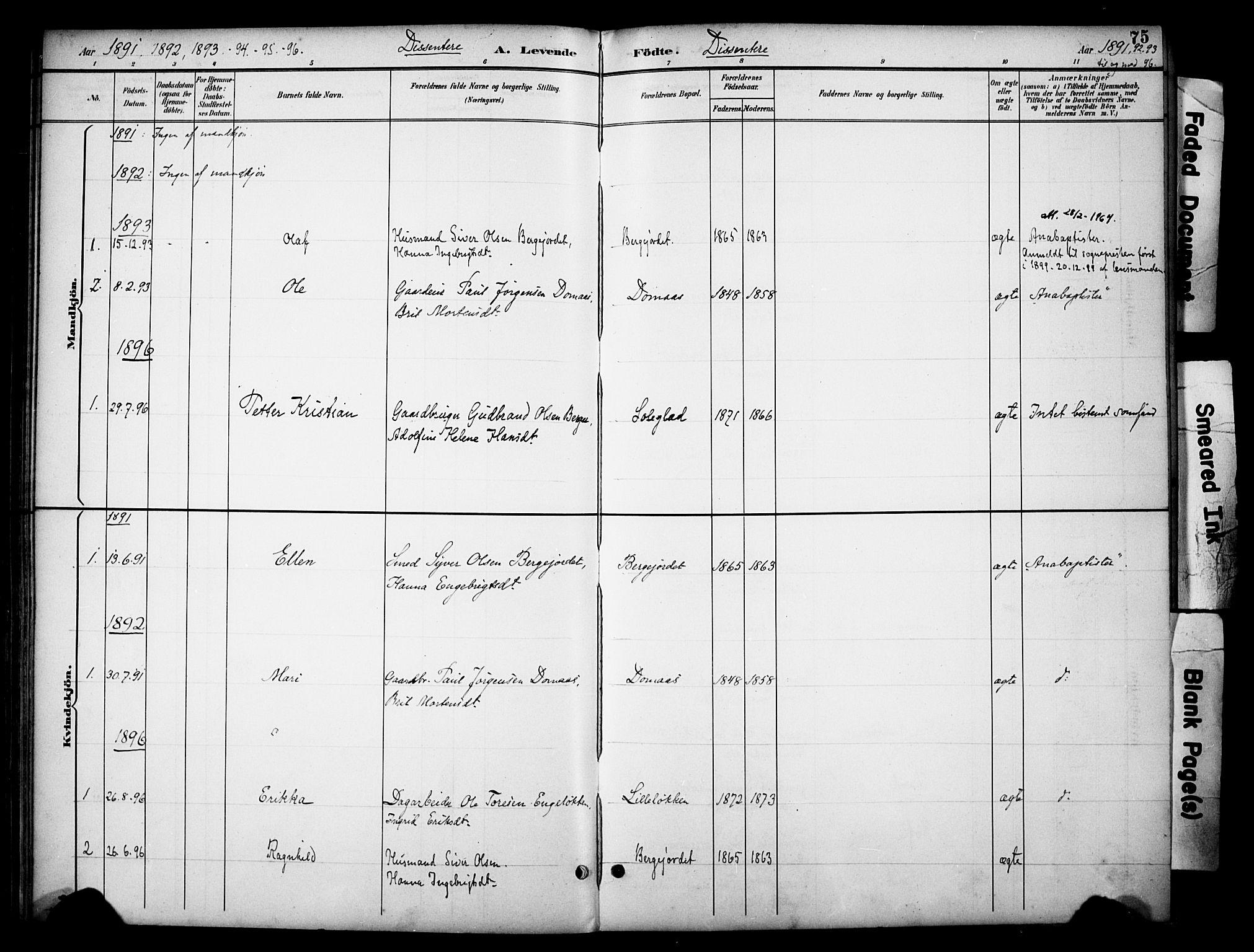 SAH, Dovre prestekontor, Ministerialbok nr. 3, 1891-1901, s. 75
