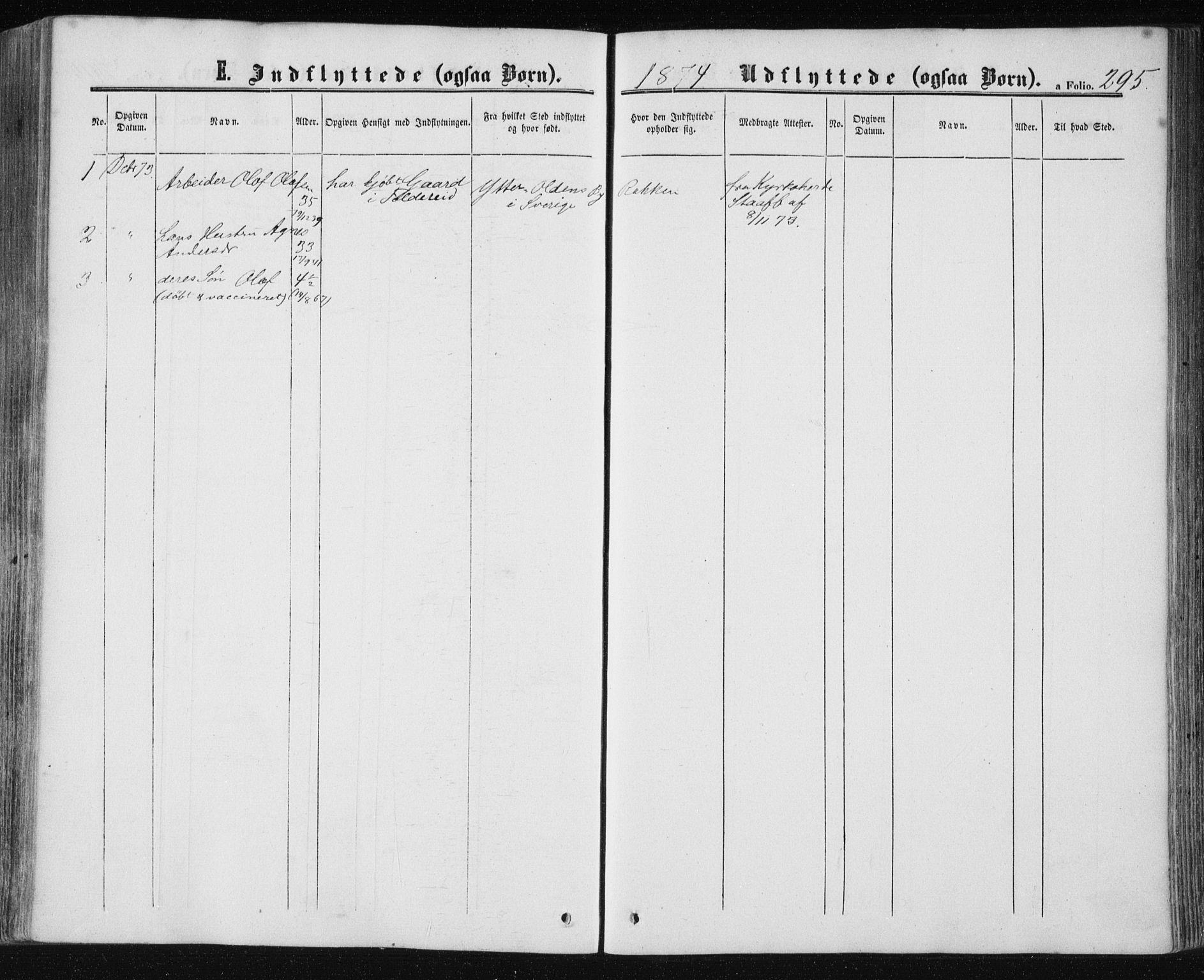 SAT, Ministerialprotokoller, klokkerbøker og fødselsregistre - Nord-Trøndelag, 780/L0641: Ministerialbok nr. 780A06, 1857-1874, s. 295