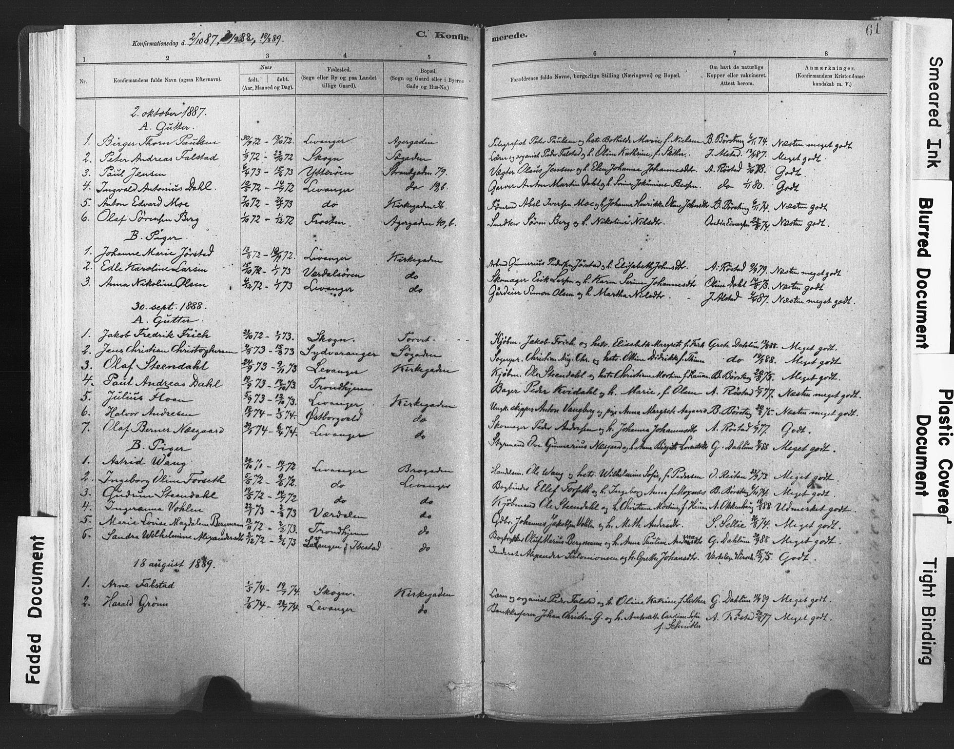 SAT, Ministerialprotokoller, klokkerbøker og fødselsregistre - Nord-Trøndelag, 720/L0189: Ministerialbok nr. 720A05, 1880-1911, s. 61