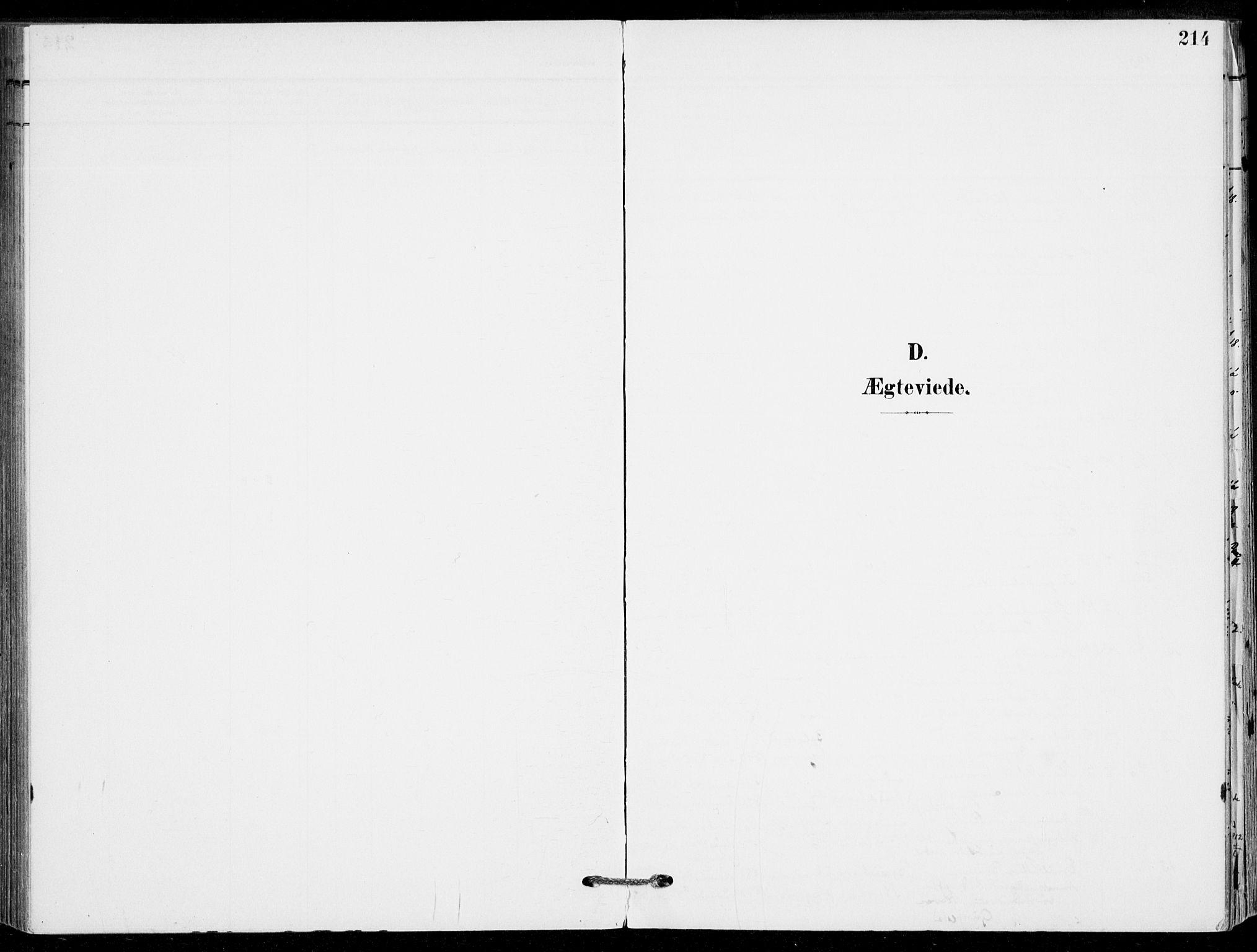 SAKO, Sande Kirkebøker, F/Fa/L0008: Ministerialbok nr. 8, 1904-1921, s. 214