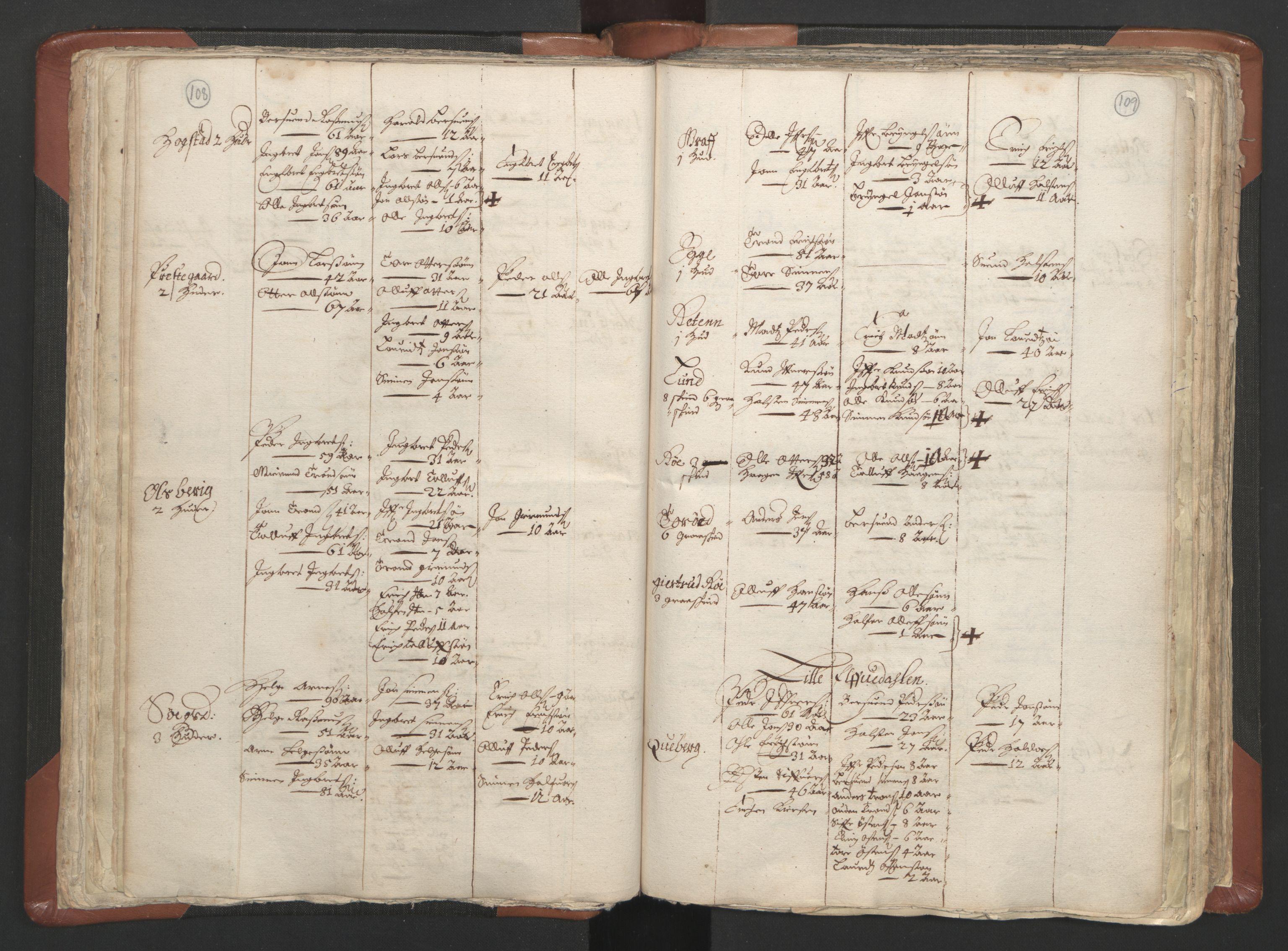 RA, Sogneprestenes manntall 1664-1666, nr. 5: Hedmark prosti, 1664-1666, s. 108-109