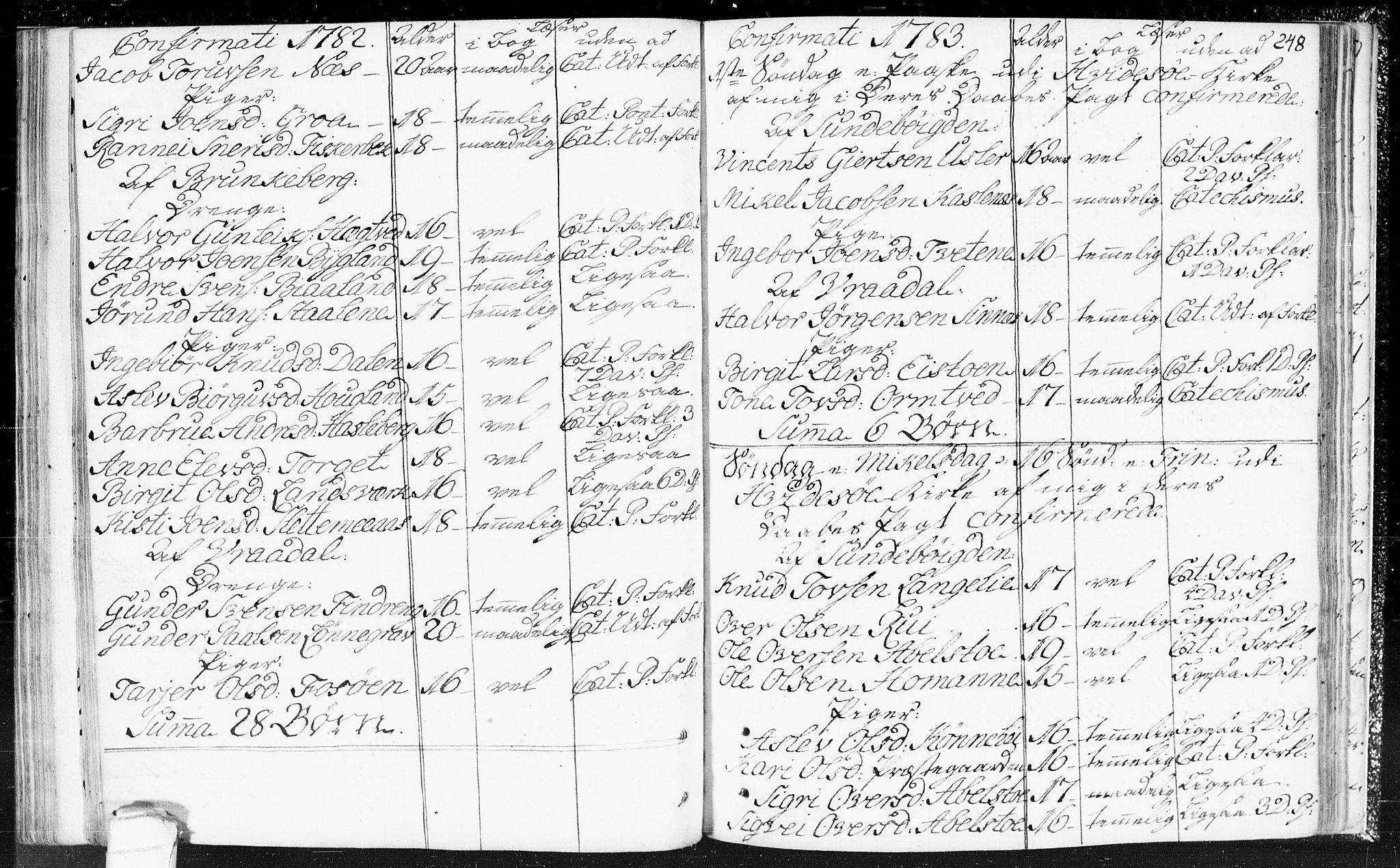 SAKO, Kviteseid kirkebøker, F/Fa/L0002: Ministerialbok nr. I 2, 1773-1786, s. 248
