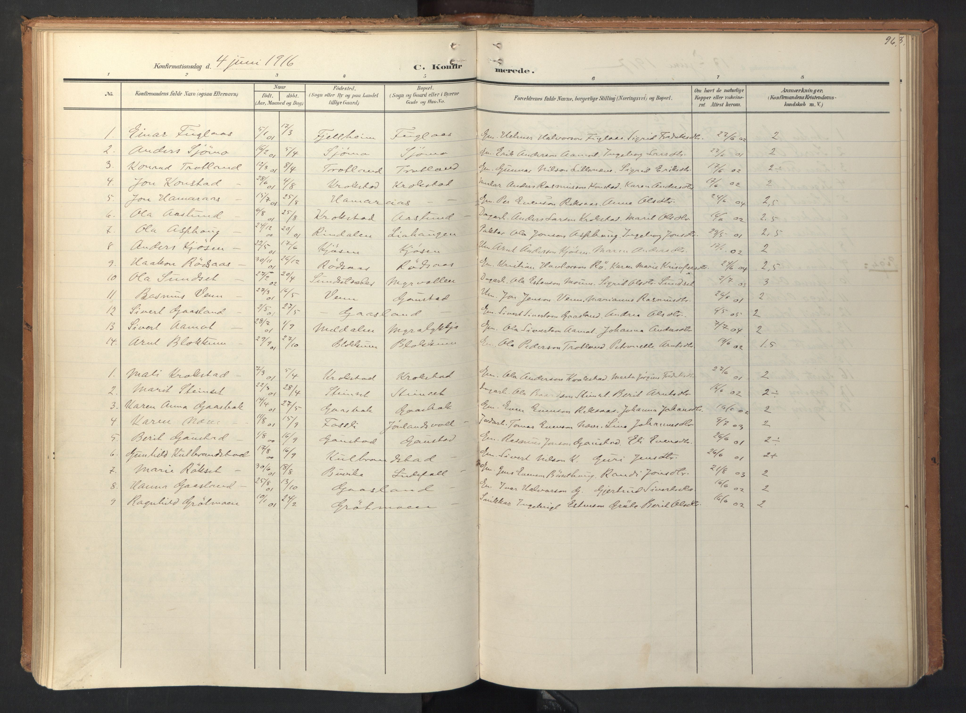 SAT, Ministerialprotokoller, klokkerbøker og fødselsregistre - Sør-Trøndelag, 694/L1128: Ministerialbok nr. 694A02, 1906-1931, s. 96