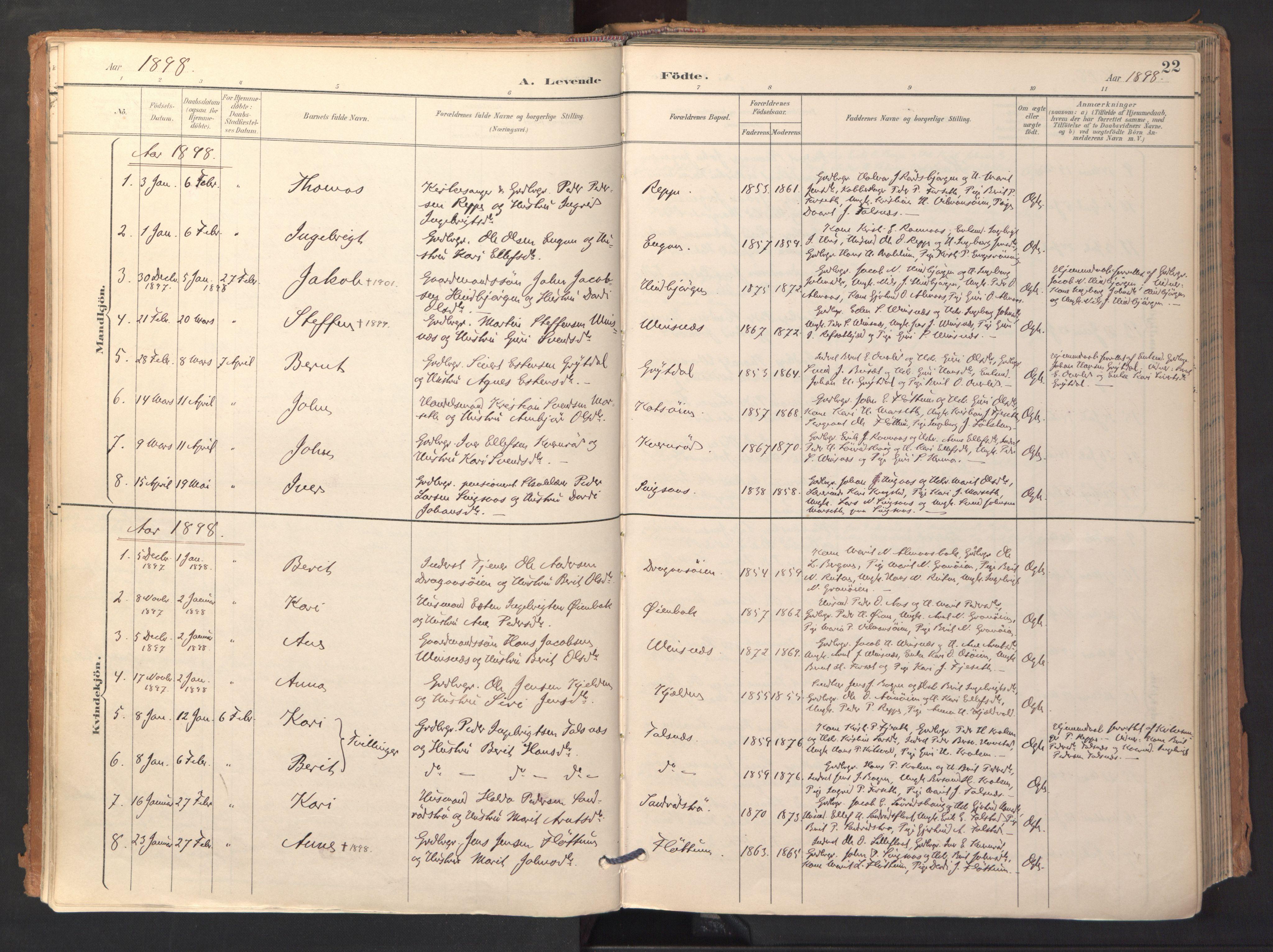 SAT, Ministerialprotokoller, klokkerbøker og fødselsregistre - Sør-Trøndelag, 688/L1025: Ministerialbok nr. 688A02, 1891-1909, s. 22