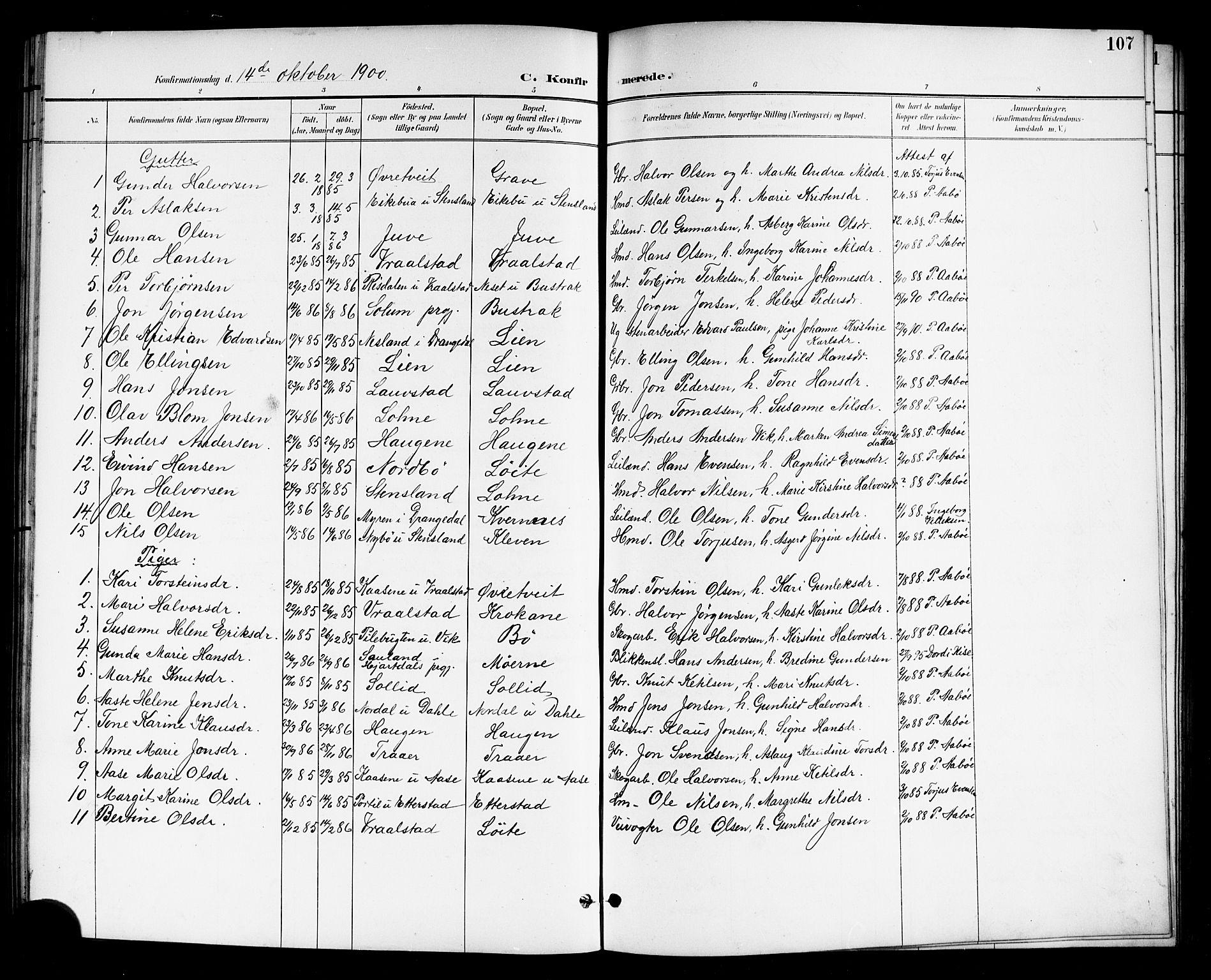 SAKO, Drangedal kirkebøker, G/Gb/L0002: Klokkerbok nr. II 2, 1895-1918, s. 107