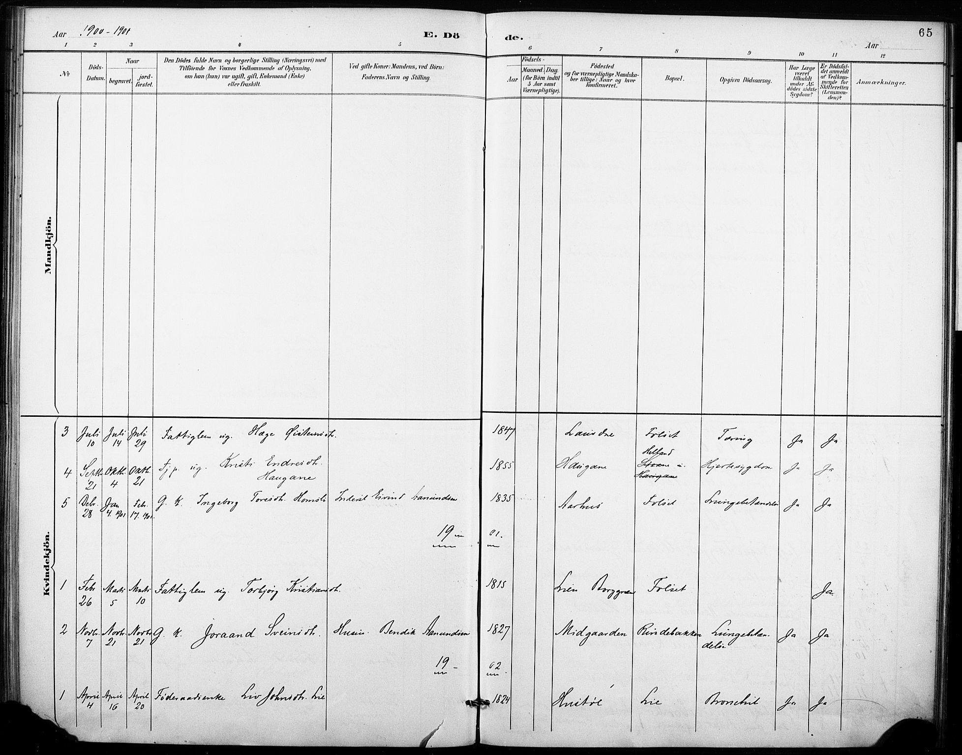 SAKO, Fyresdal kirkebøker, F/Fb/L0003: Ministerialbok nr. II 3, 1887-1903, s. 65
