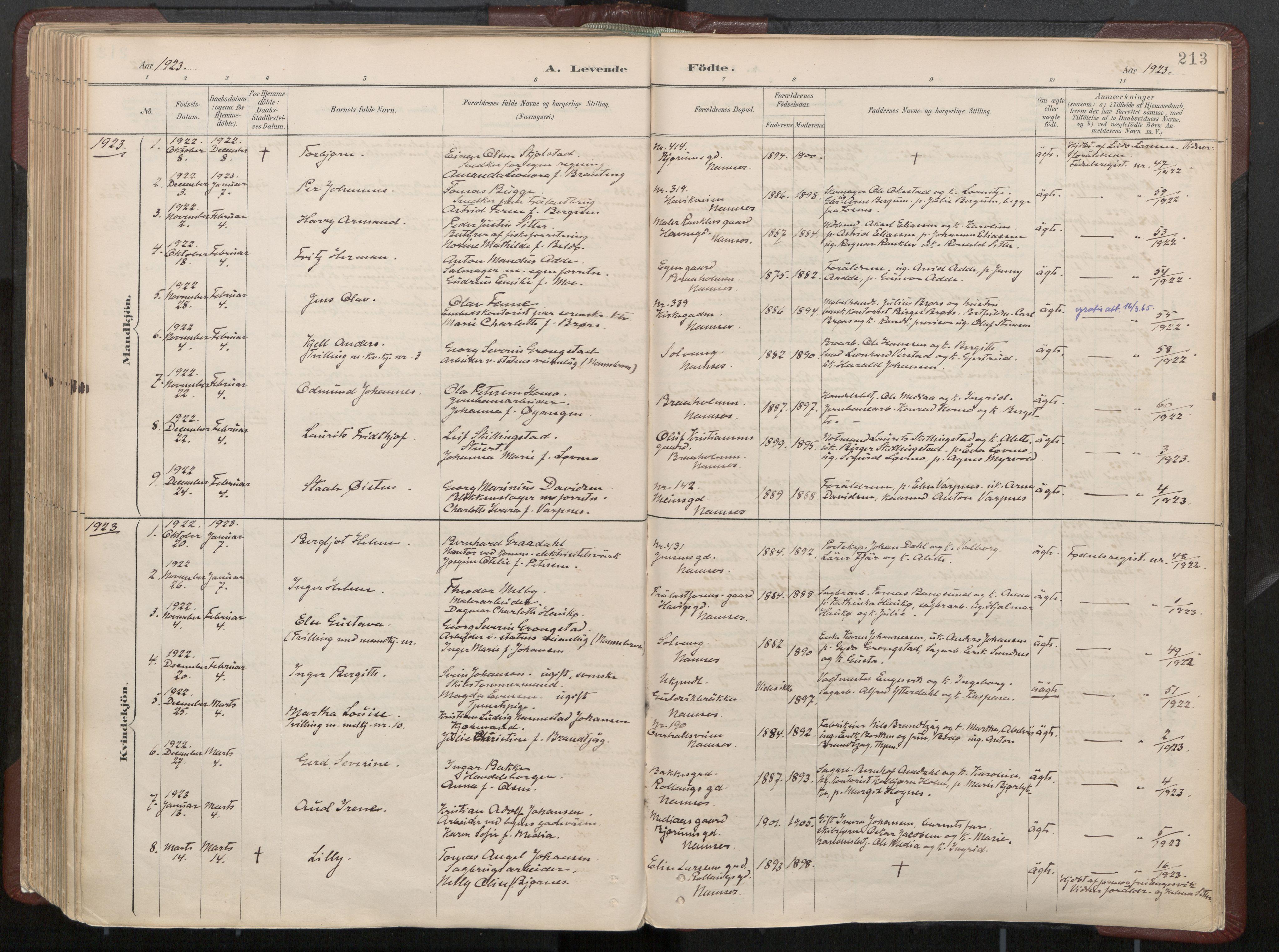 SAT, Ministerialprotokoller, klokkerbøker og fødselsregistre - Nord-Trøndelag, 768/L0574: Ministerialbok nr. 768A08, 1887-1927, s. 213