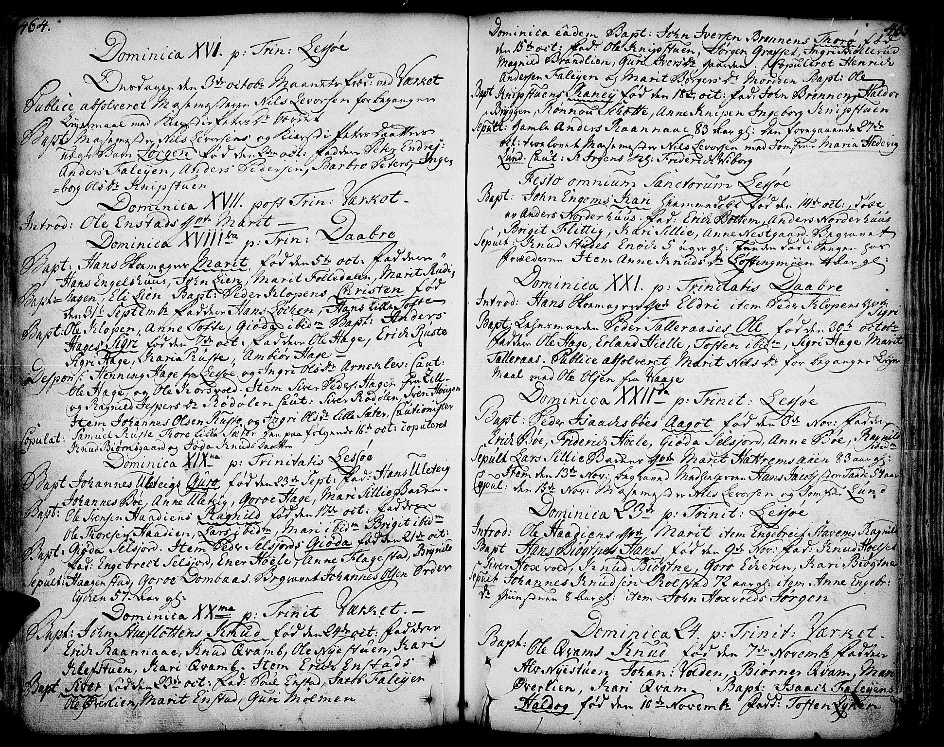 SAH, Lesja prestekontor, Ministerialbok nr. 2, 1732-1776, s. 464-465