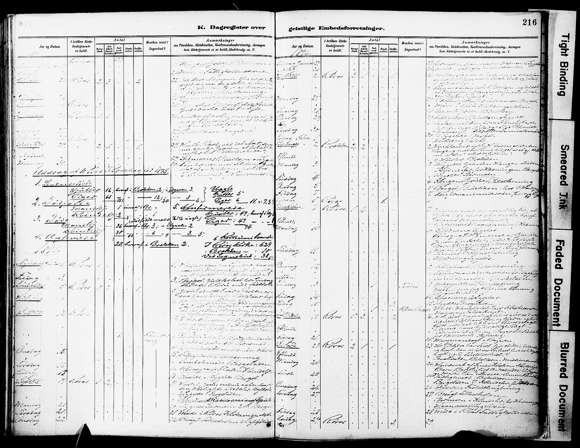 SAT, Ministerialprotokoller, klokkerbøker og fødselsregistre - Sør-Trøndelag, 681/L0935: Ministerialbok nr. 681A13, 1890-1898, s. 216
