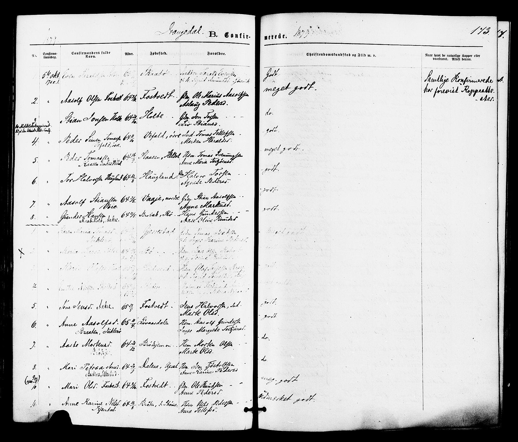 SAKO, Drangedal kirkebøker, F/Fa/L0009: Ministerialbok nr. 9 /1, 1872-1884, s. 173