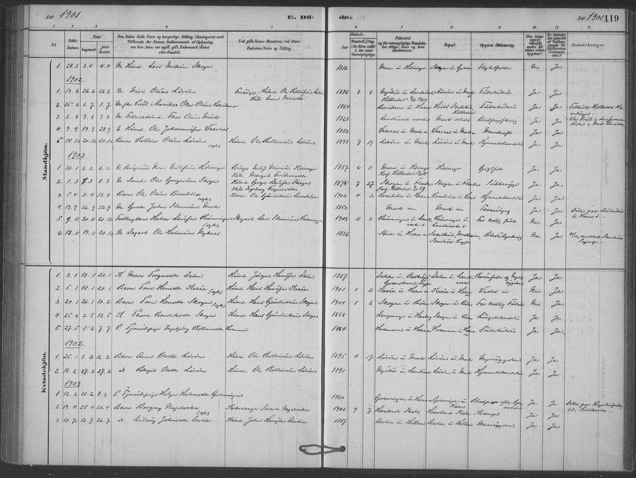 SAKO, Heddal kirkebøker, F/Fb/L0002: Ministerialbok nr. II 2, 1878-1913, s. 119