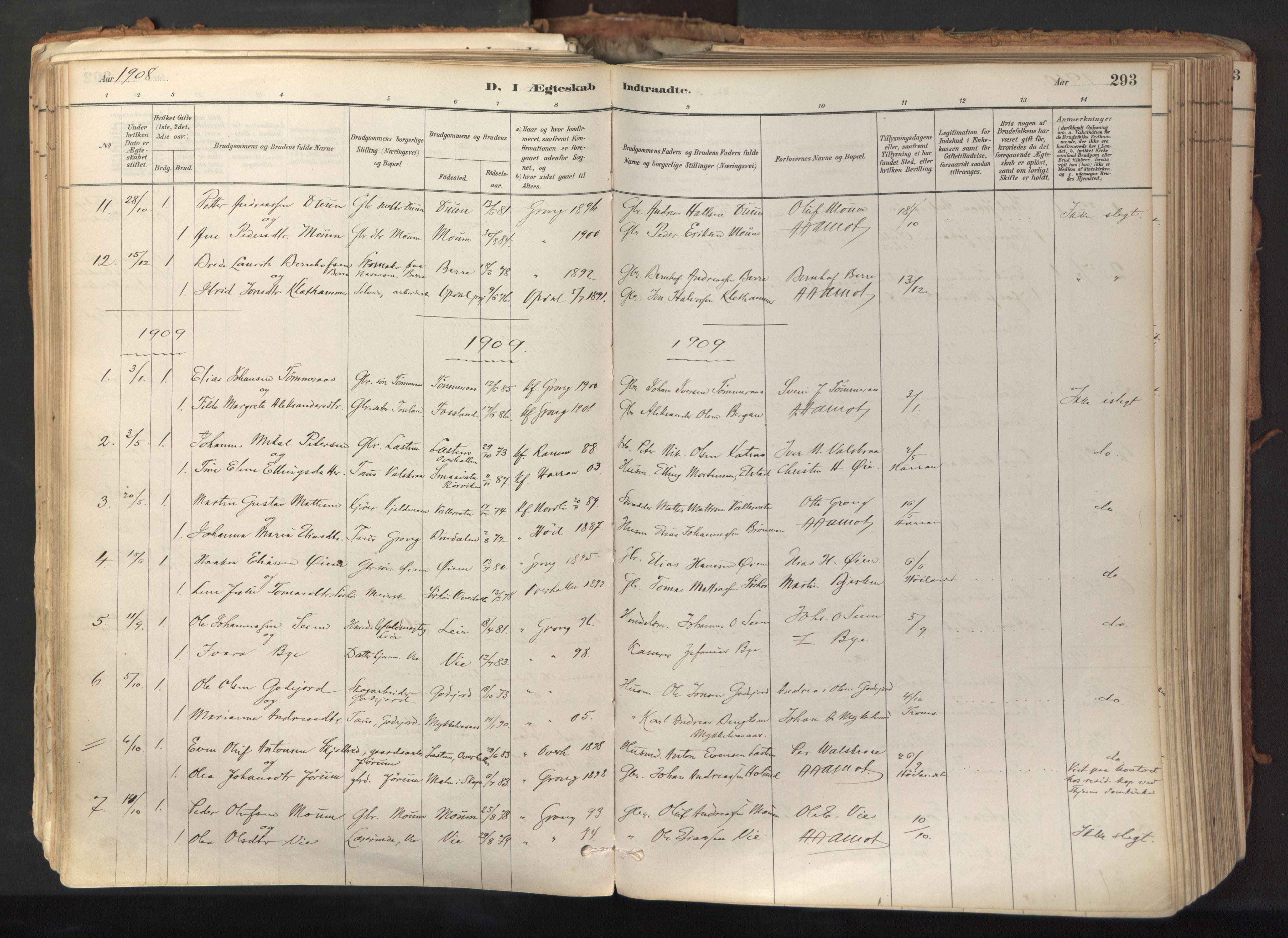 SAT, Ministerialprotokoller, klokkerbøker og fødselsregistre - Nord-Trøndelag, 758/L0519: Ministerialbok nr. 758A04, 1880-1926, s. 293