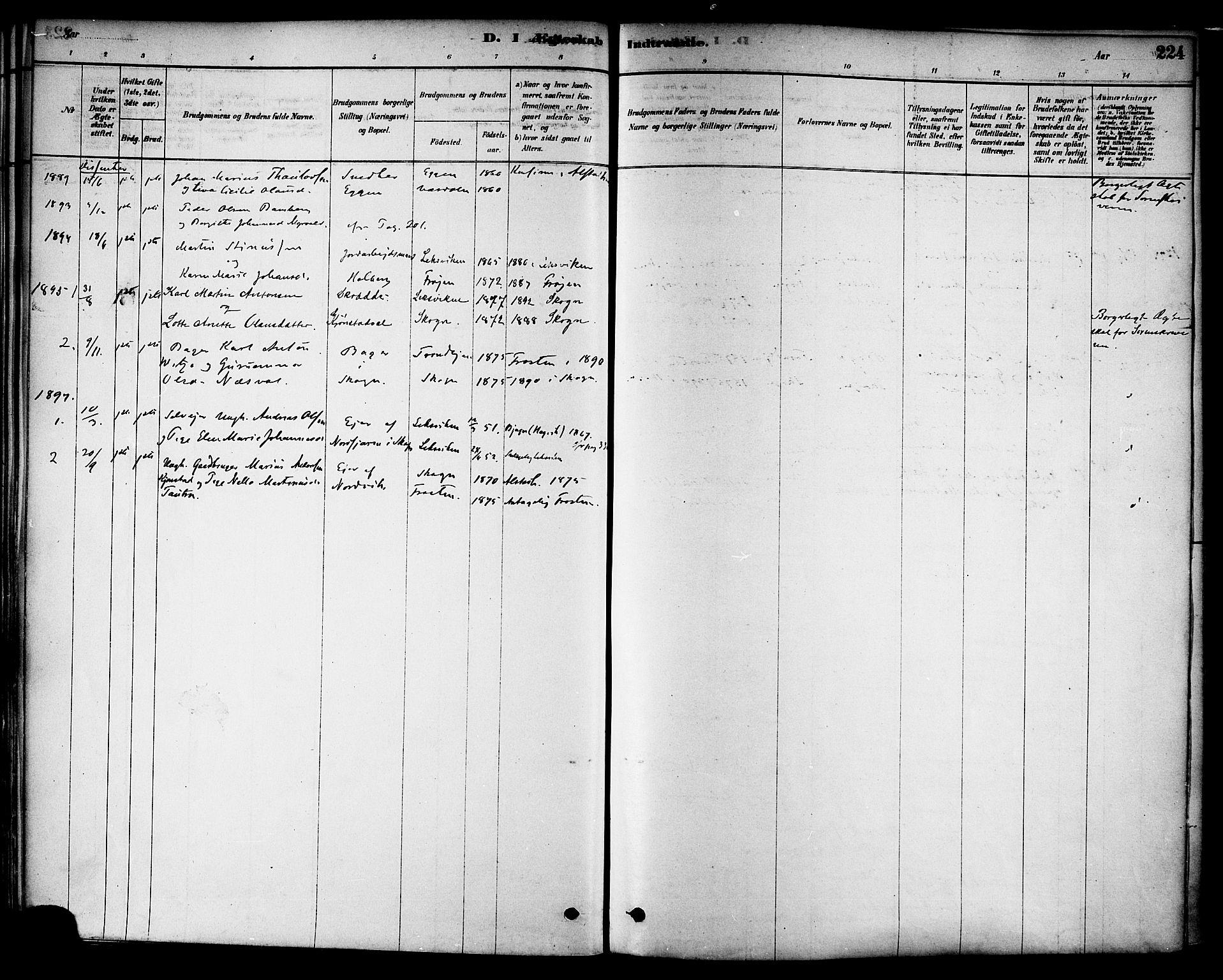 SAT, Ministerialprotokoller, klokkerbøker og fødselsregistre - Nord-Trøndelag, 717/L0159: Ministerialbok nr. 717A09, 1878-1898, s. 224