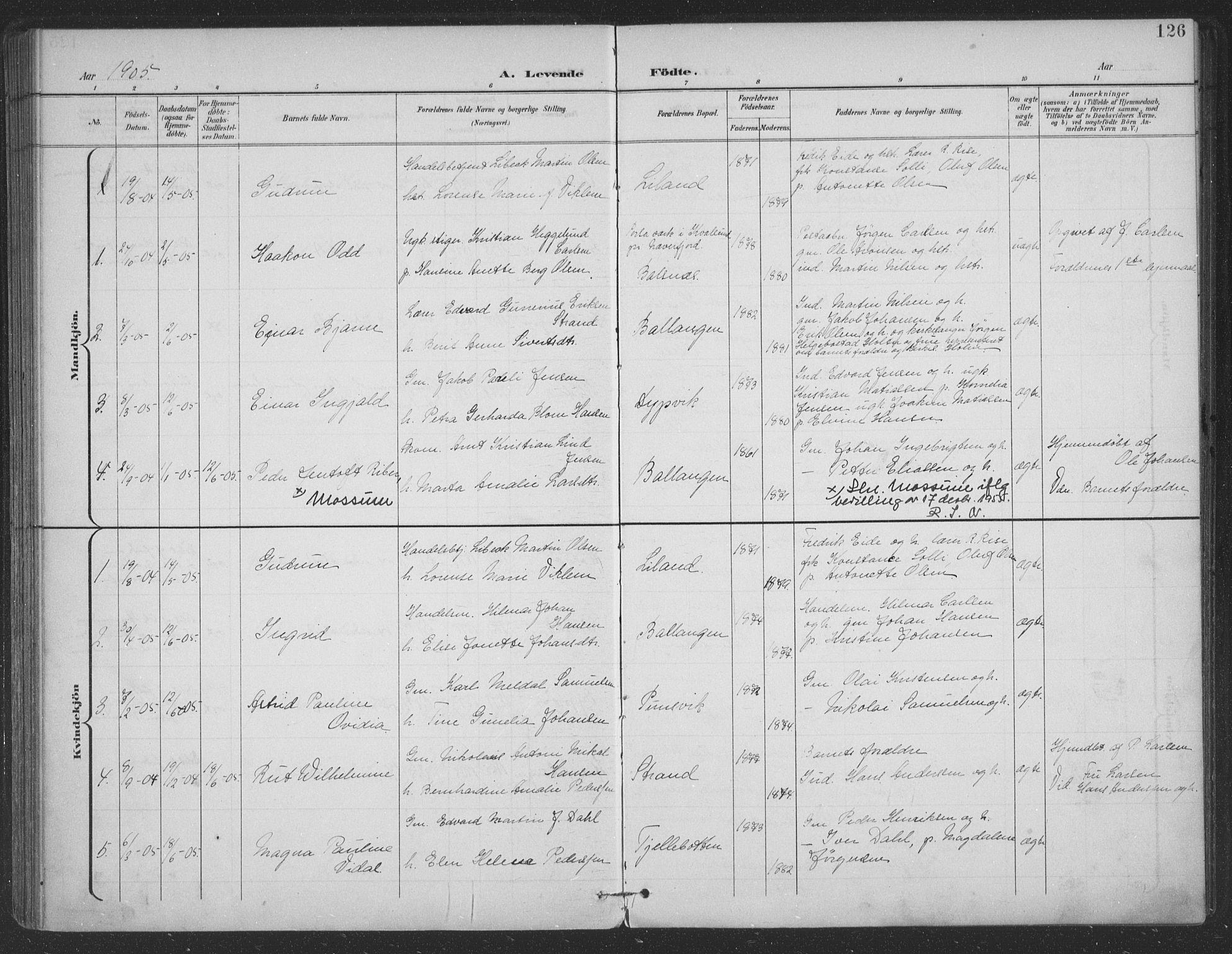 SAT, Ministerialprotokoller, klokkerbøker og fødselsregistre - Nordland, 863/L0899: Ministerialbok nr. 863A11, 1897-1906, s. 126