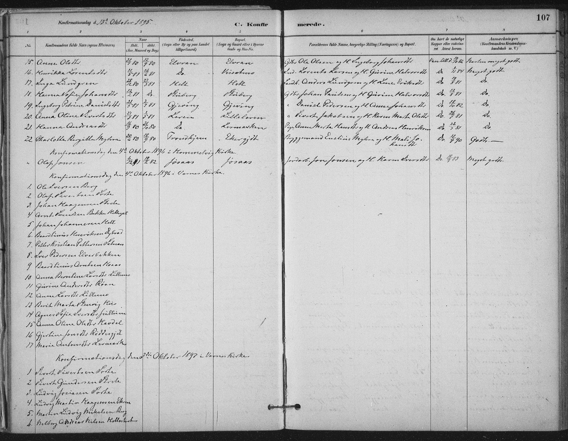 SAT, Ministerialprotokoller, klokkerbøker og fødselsregistre - Nord-Trøndelag, 710/L0095: Ministerialbok nr. 710A01, 1880-1914, s. 107