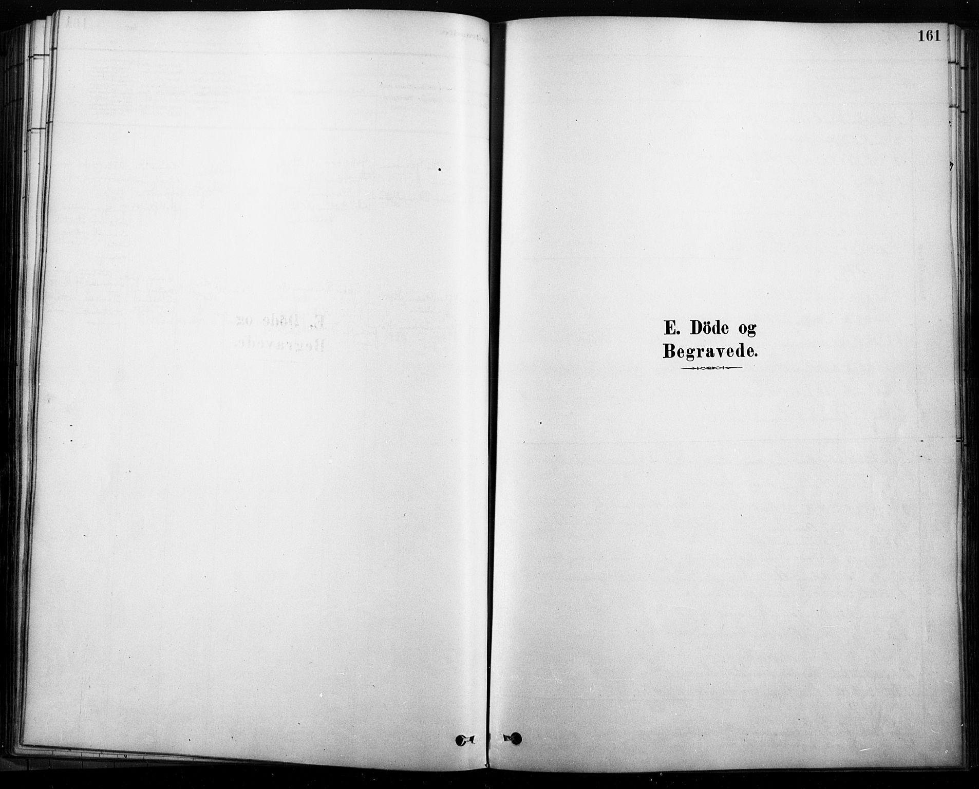 SAH, Rendalen prestekontor, H/Ha/Haa/L0009: Ministerialbok nr. 9, 1878-1901, s. 161