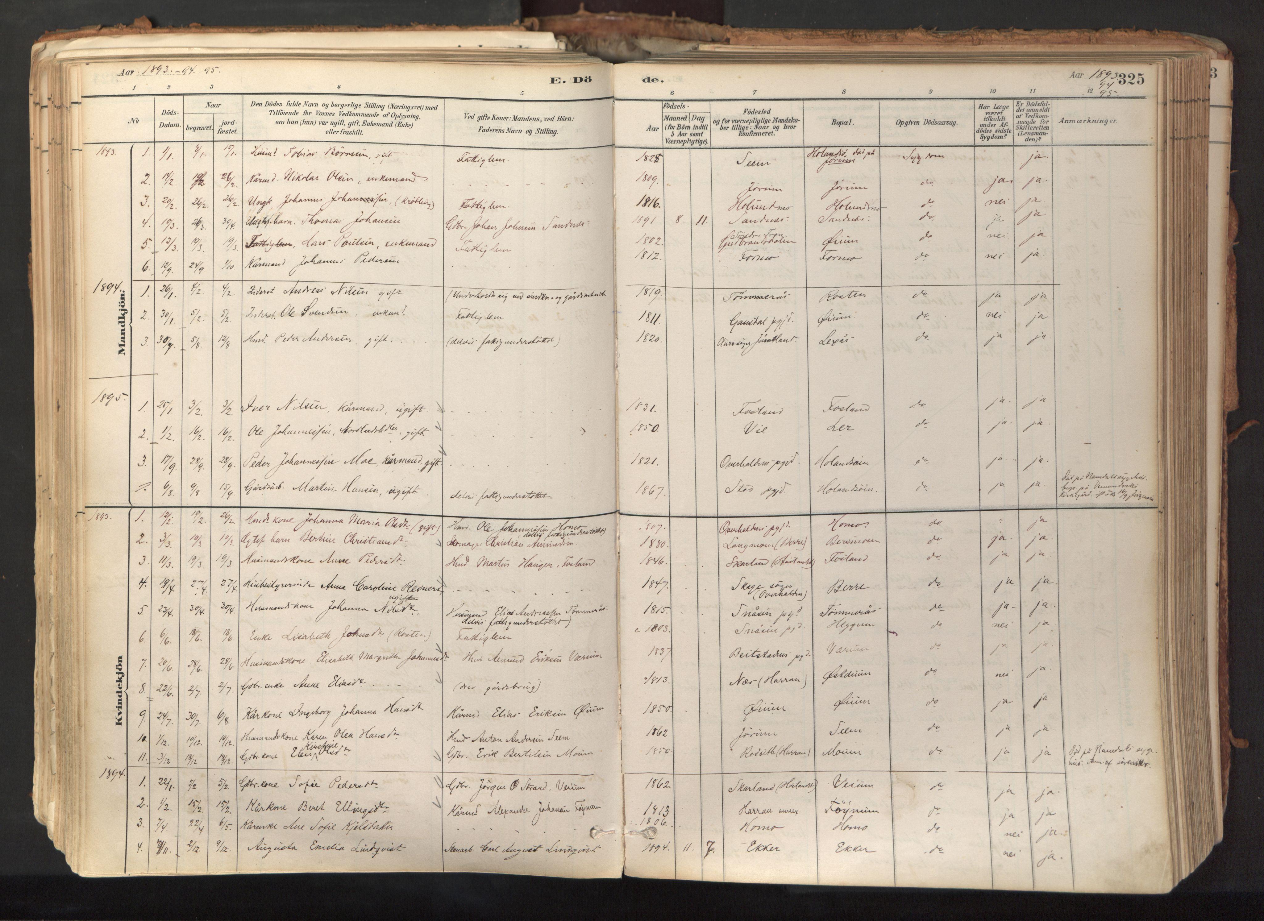 SAT, Ministerialprotokoller, klokkerbøker og fødselsregistre - Nord-Trøndelag, 758/L0519: Ministerialbok nr. 758A04, 1880-1926, s. 325