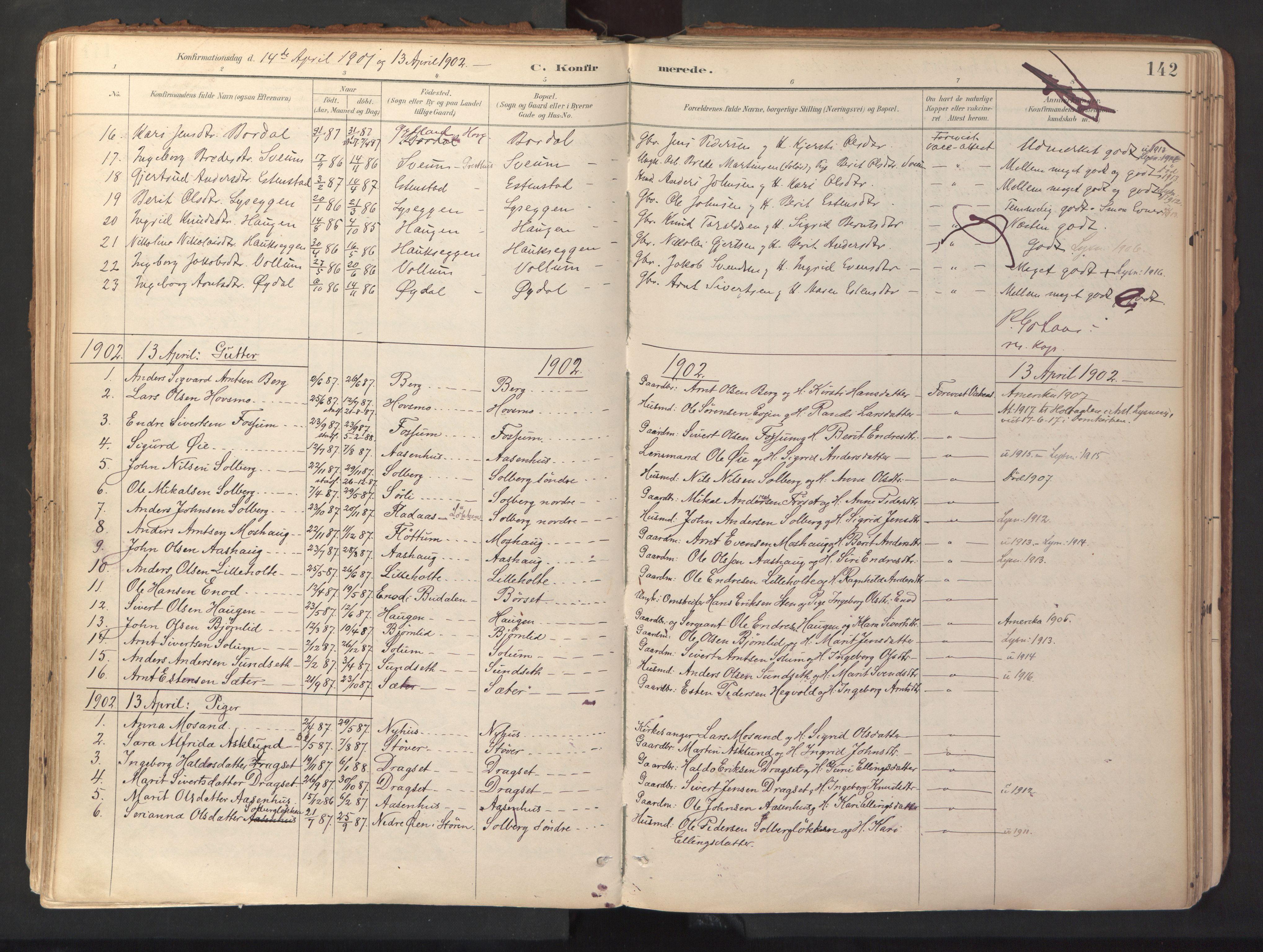 SAT, Ministerialprotokoller, klokkerbøker og fødselsregistre - Sør-Trøndelag, 689/L1041: Ministerialbok nr. 689A06, 1891-1923, s. 142