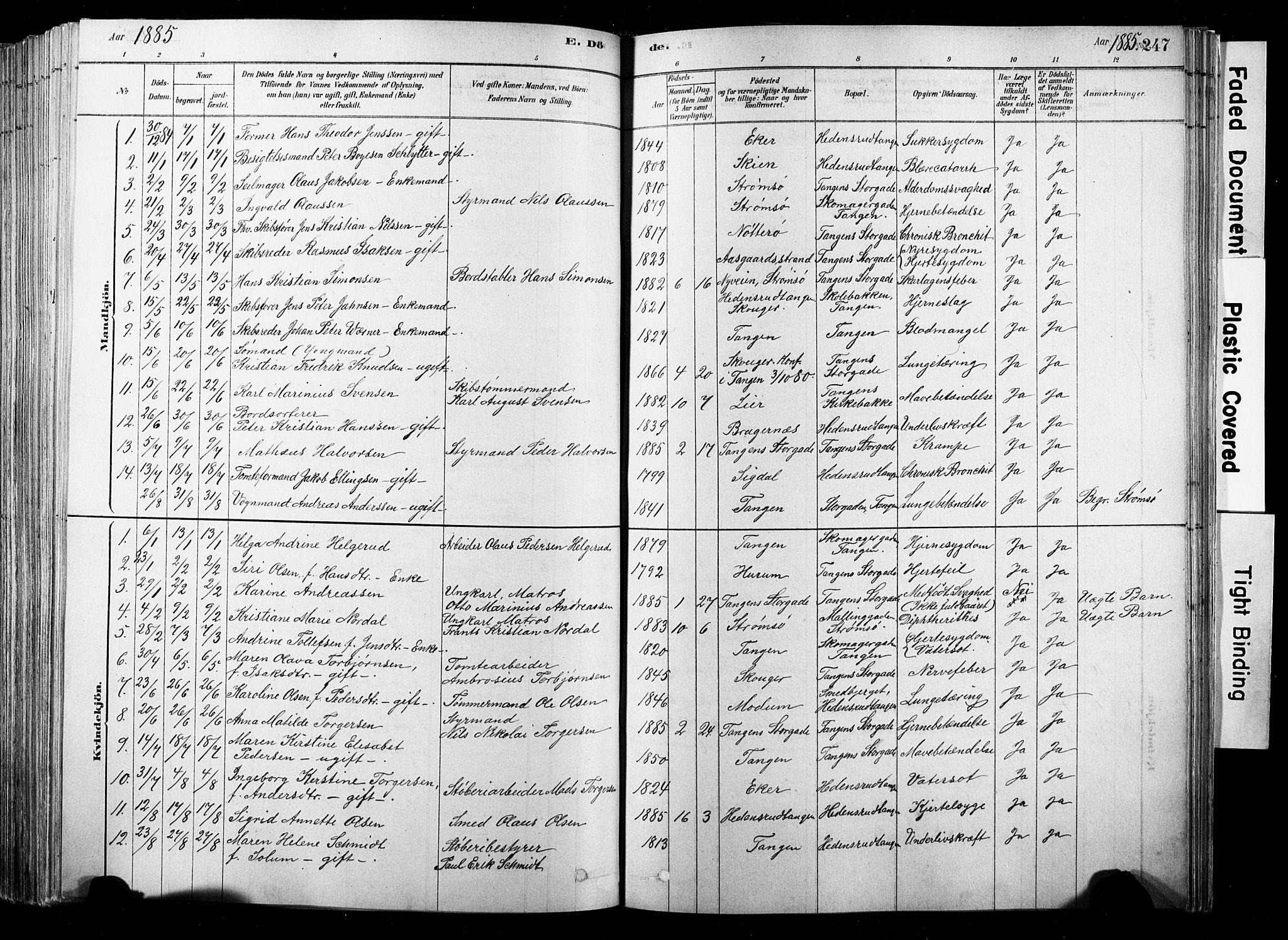 SAKO, Strømsø kirkebøker, F/Fb/L0006: Ministerialbok nr. II 6, 1879-1910, s. 247