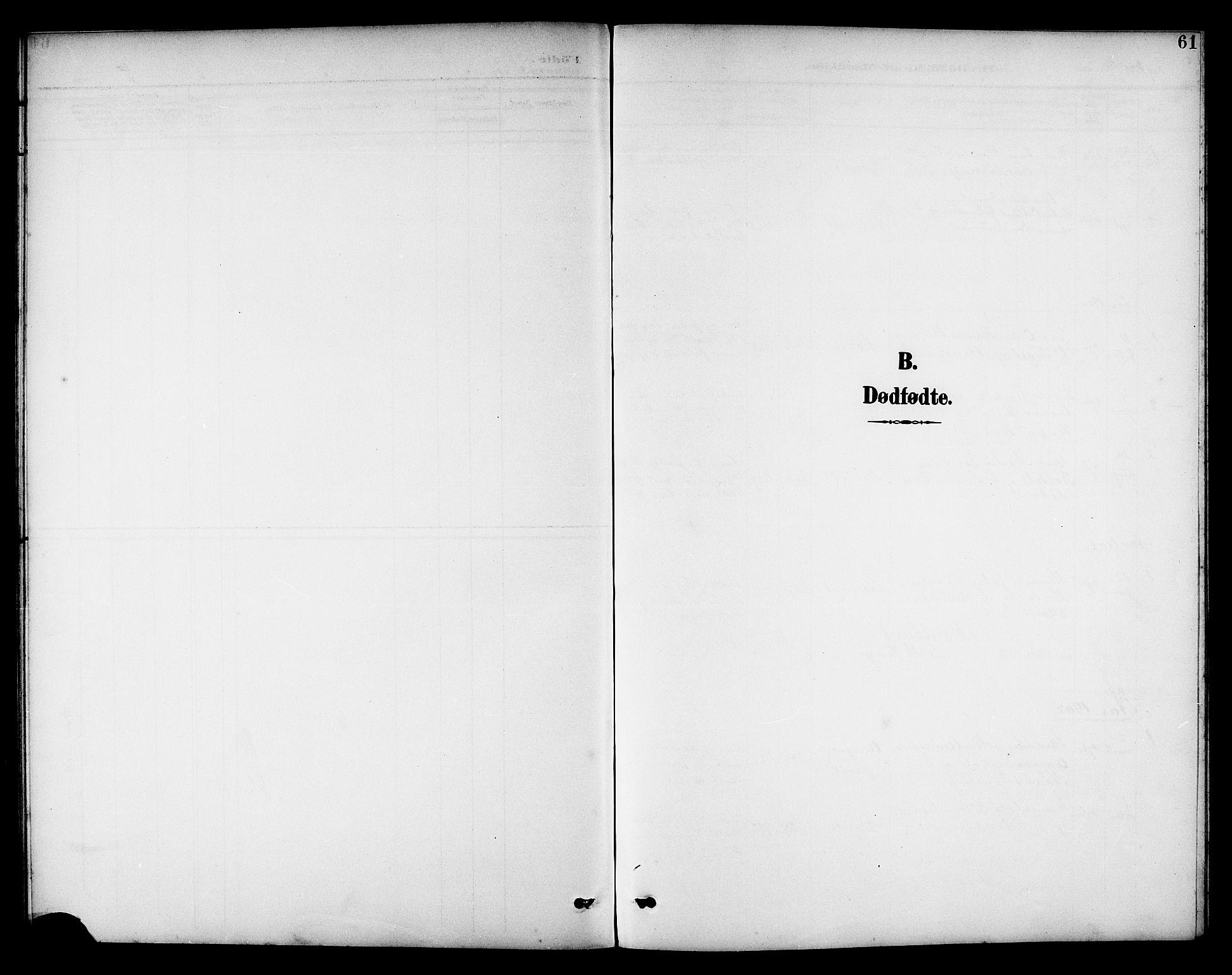 SAT, Ministerialprotokoller, klokkerbøker og fødselsregistre - Nord-Trøndelag, 742/L0412: Klokkerbok nr. 742C03, 1898-1910, s. 61
