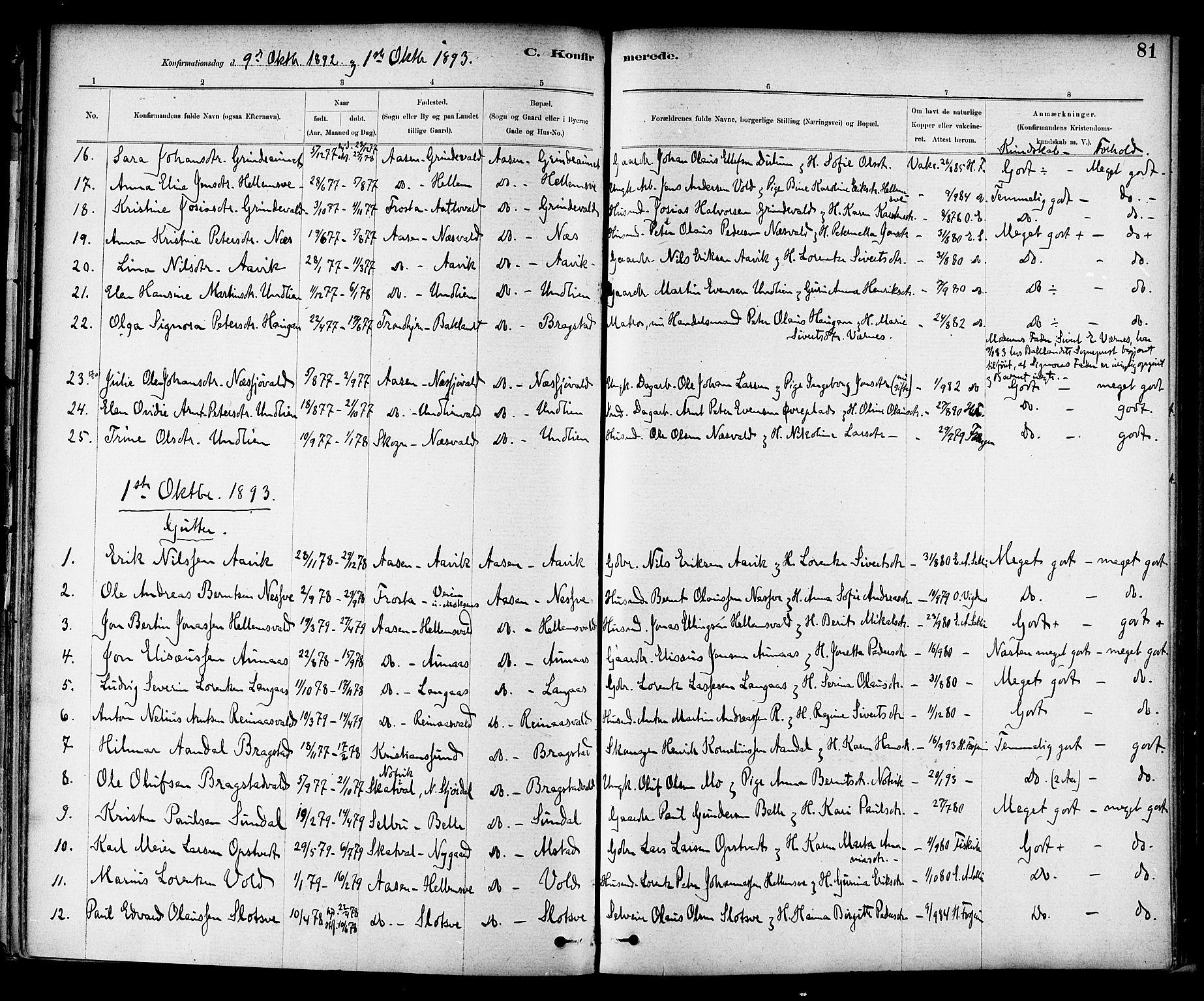 SAT, Ministerialprotokoller, klokkerbøker og fødselsregistre - Nord-Trøndelag, 714/L0130: Ministerialbok nr. 714A01, 1878-1895, s. 81