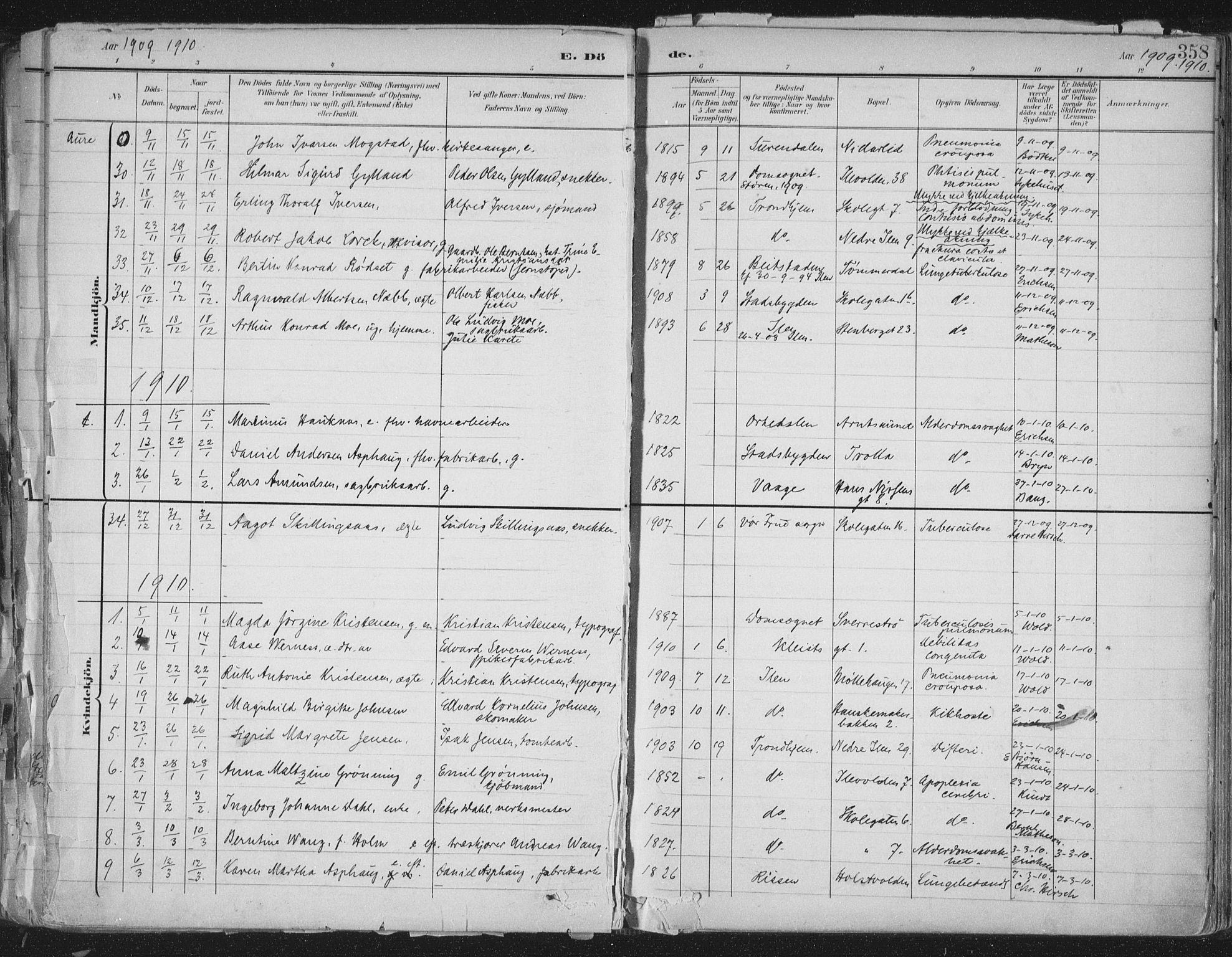SAT, Ministerialprotokoller, klokkerbøker og fødselsregistre - Sør-Trøndelag, 603/L0167: Ministerialbok nr. 603A06, 1896-1932, s. 358