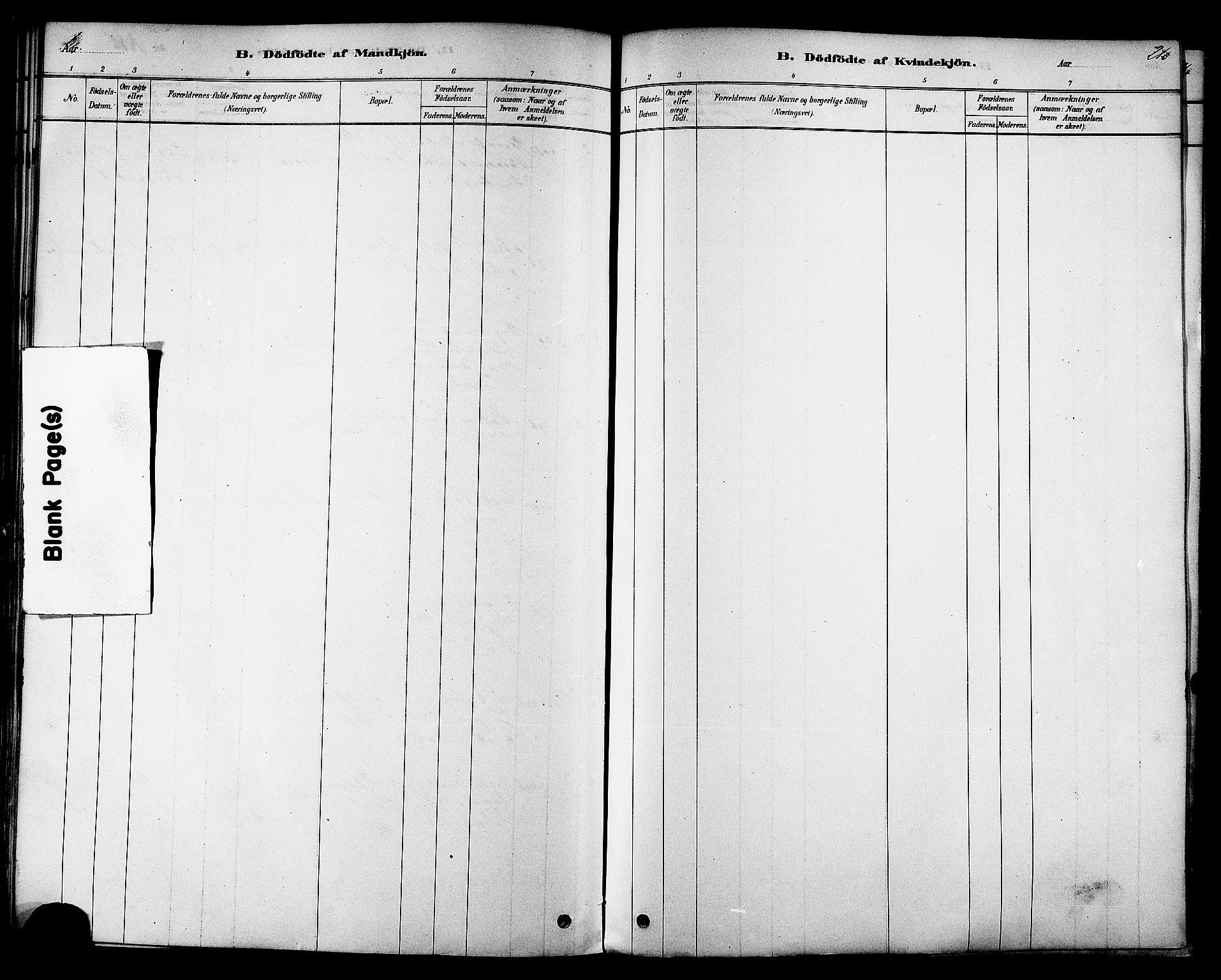 SAT, Ministerialprotokoller, klokkerbøker og fødselsregistre - Sør-Trøndelag, 606/L0294: Ministerialbok nr. 606A09, 1878-1886, s. 210