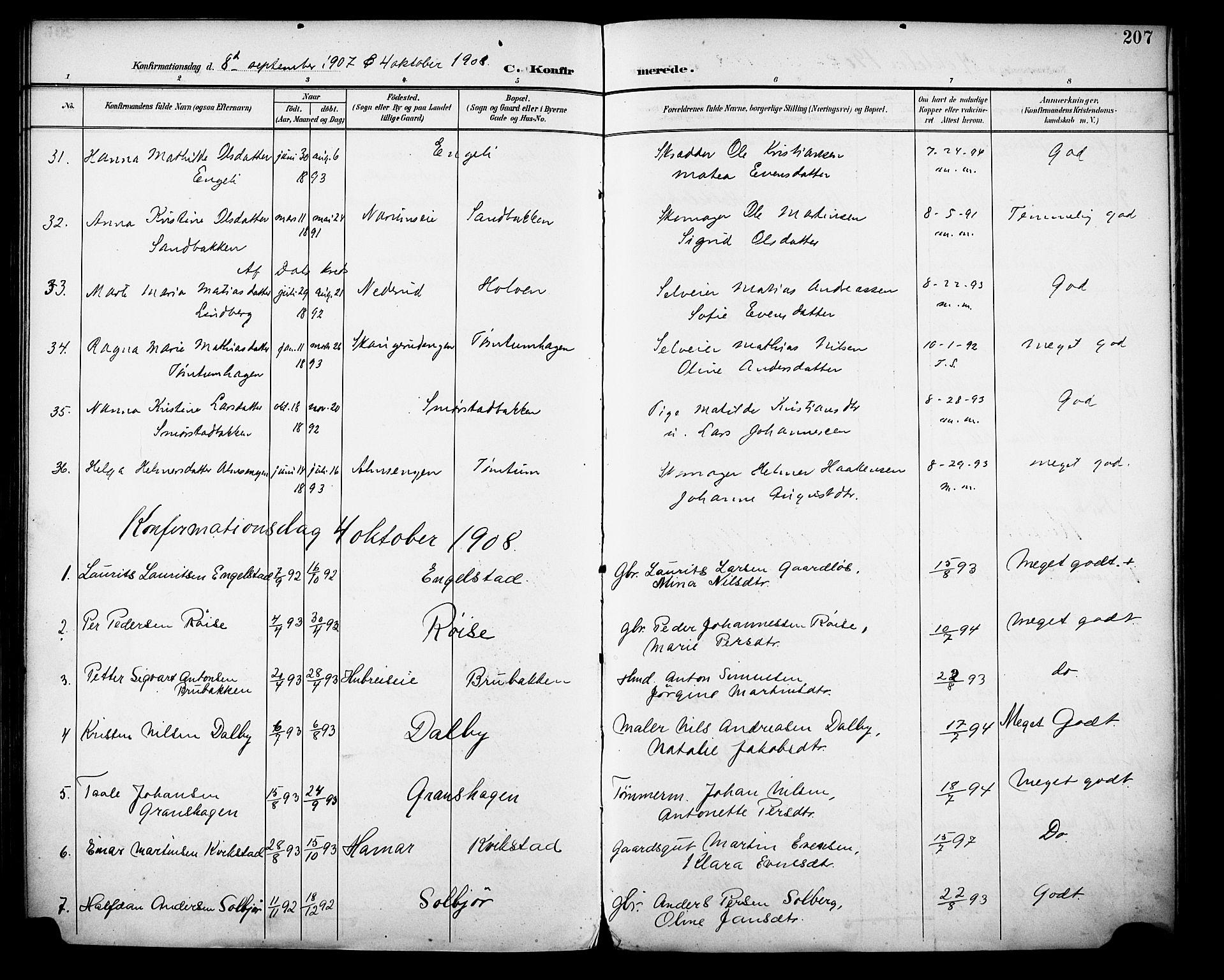 SAH, Vestre Toten prestekontor, Ministerialbok nr. 13, 1895-1911, s. 207
