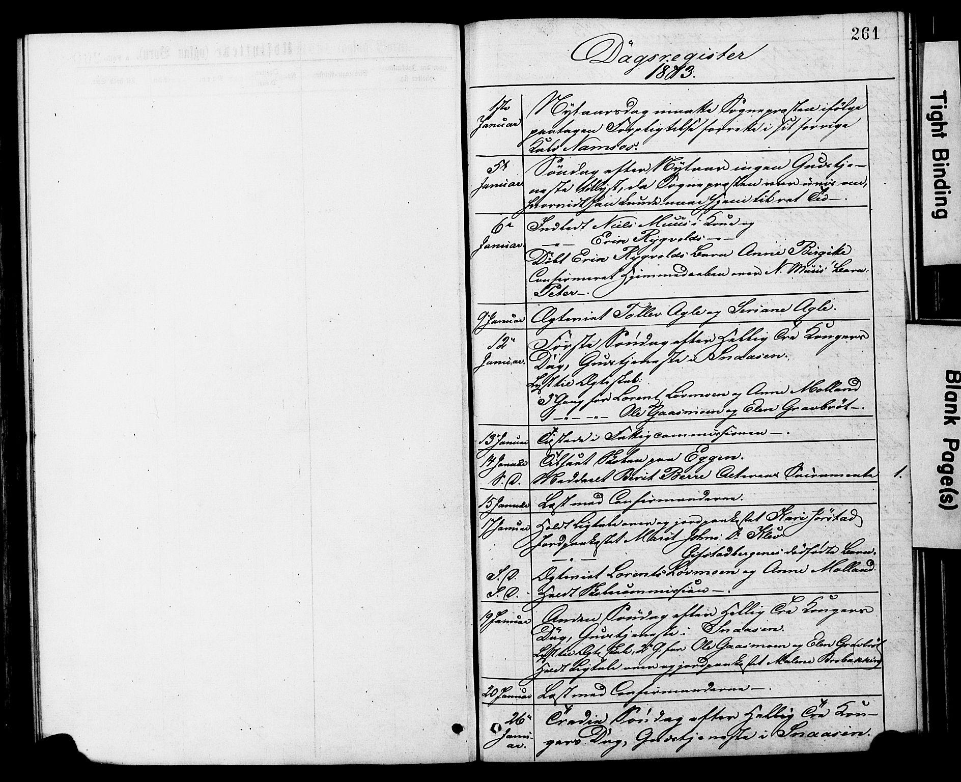 SAT, Ministerialprotokoller, klokkerbøker og fødselsregistre - Nord-Trøndelag, 749/L0473: Ministerialbok nr. 749A07, 1873-1887, s. 261