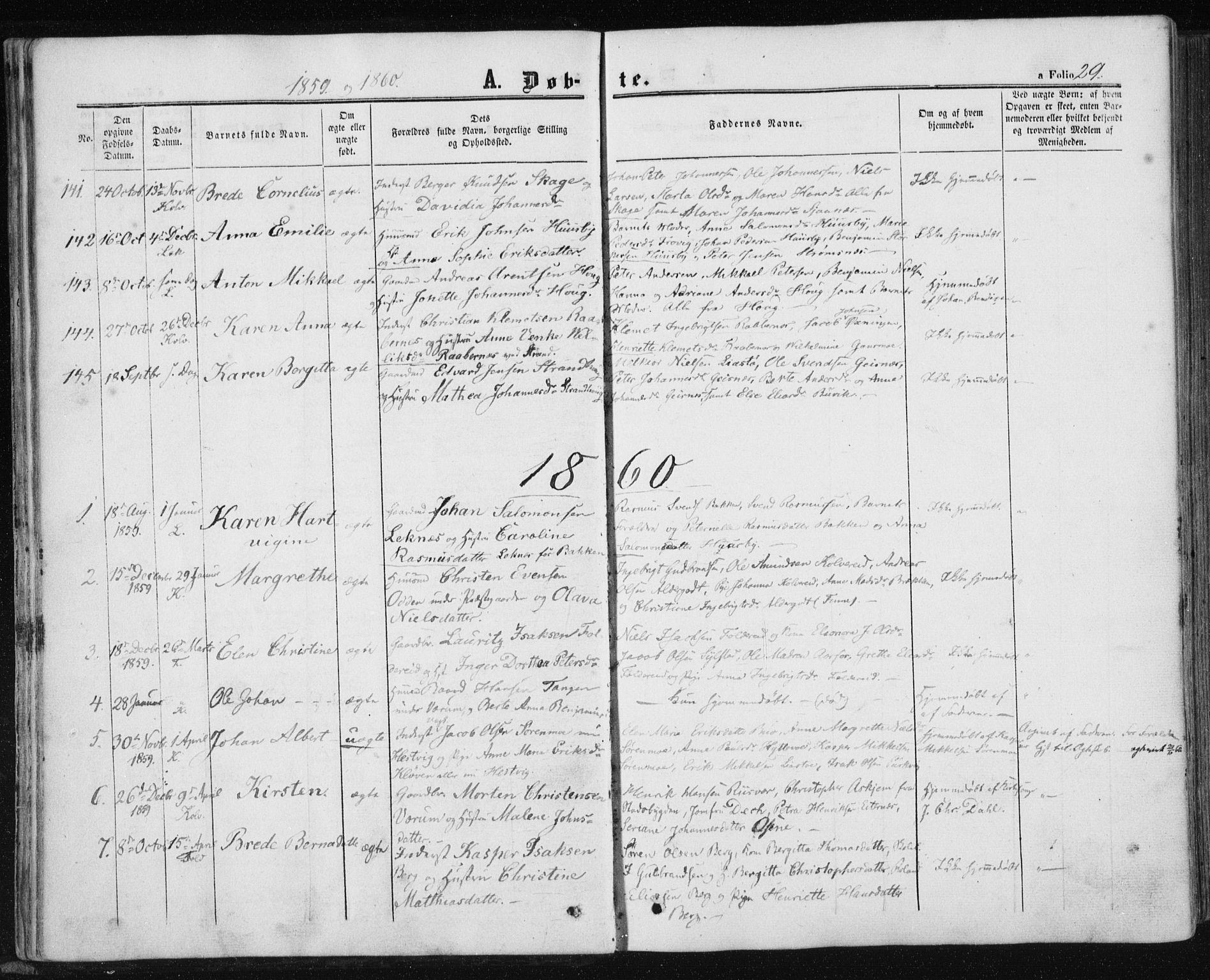 SAT, Ministerialprotokoller, klokkerbøker og fødselsregistre - Nord-Trøndelag, 780/L0641: Ministerialbok nr. 780A06, 1857-1874, s. 29