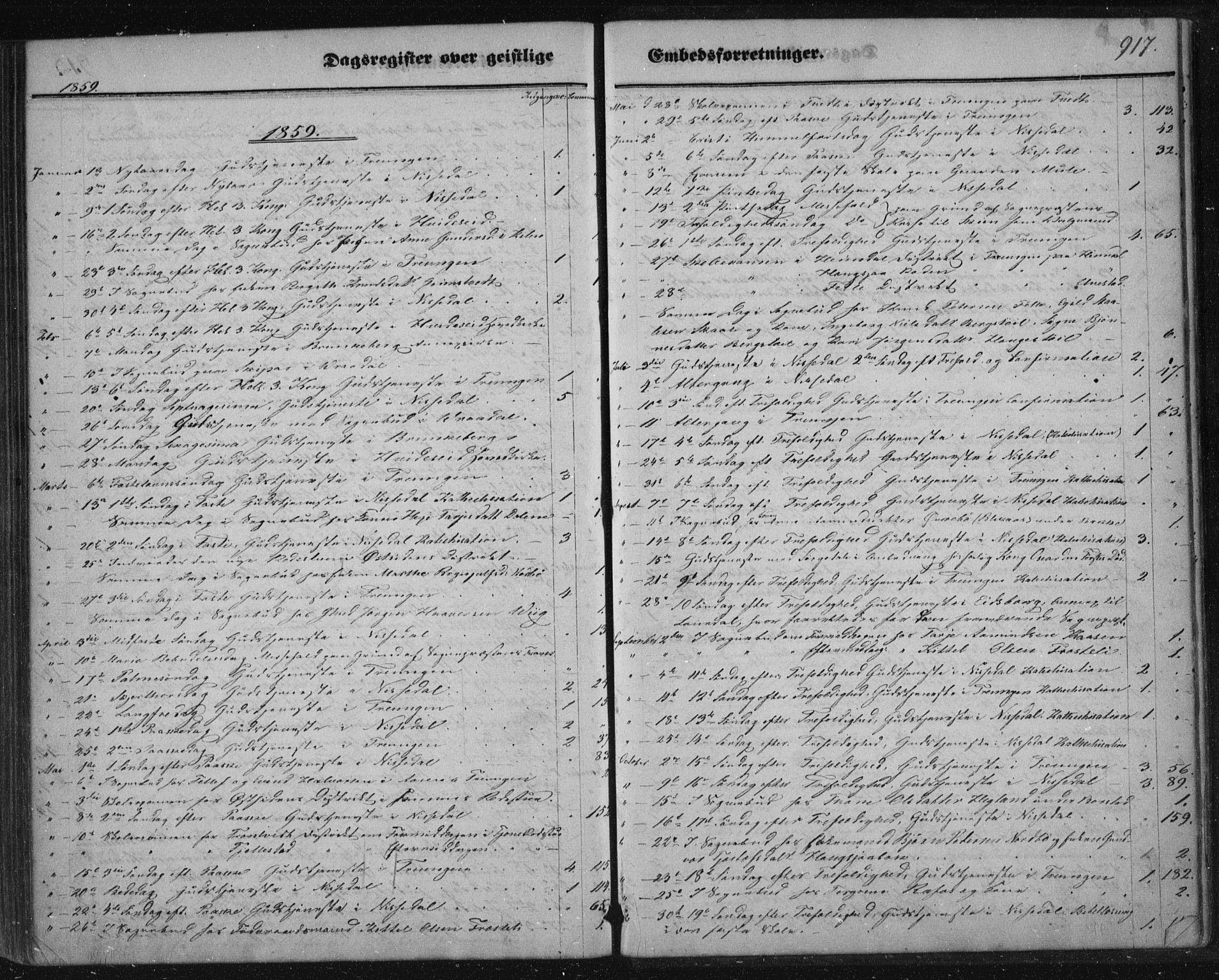 SAKO, Nissedal kirkebøker, F/Fa/L0003: Ministerialbok nr. I 3, 1846-1870, s. 916-917