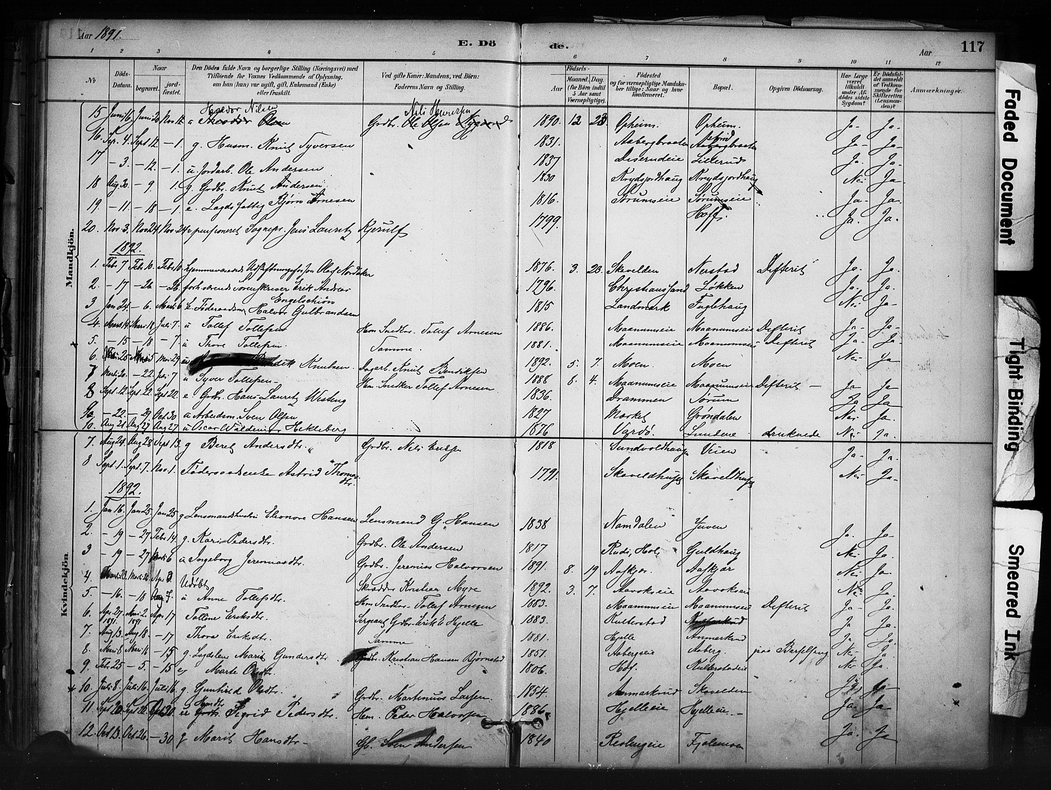 SAH, Nord-Aurdal prestekontor, Ministerialbok nr. 13, 1883-1895, s. 117