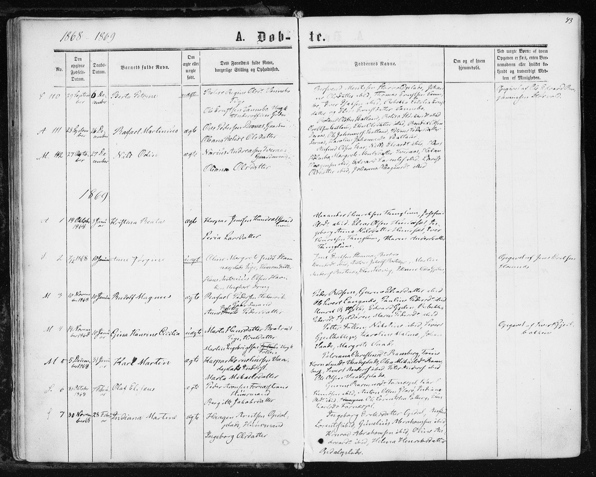 SAT, Ministerialprotokoller, klokkerbøker og fødselsregistre - Nord-Trøndelag, 741/L0394: Ministerialbok nr. 741A08, 1864-1877, s. 43