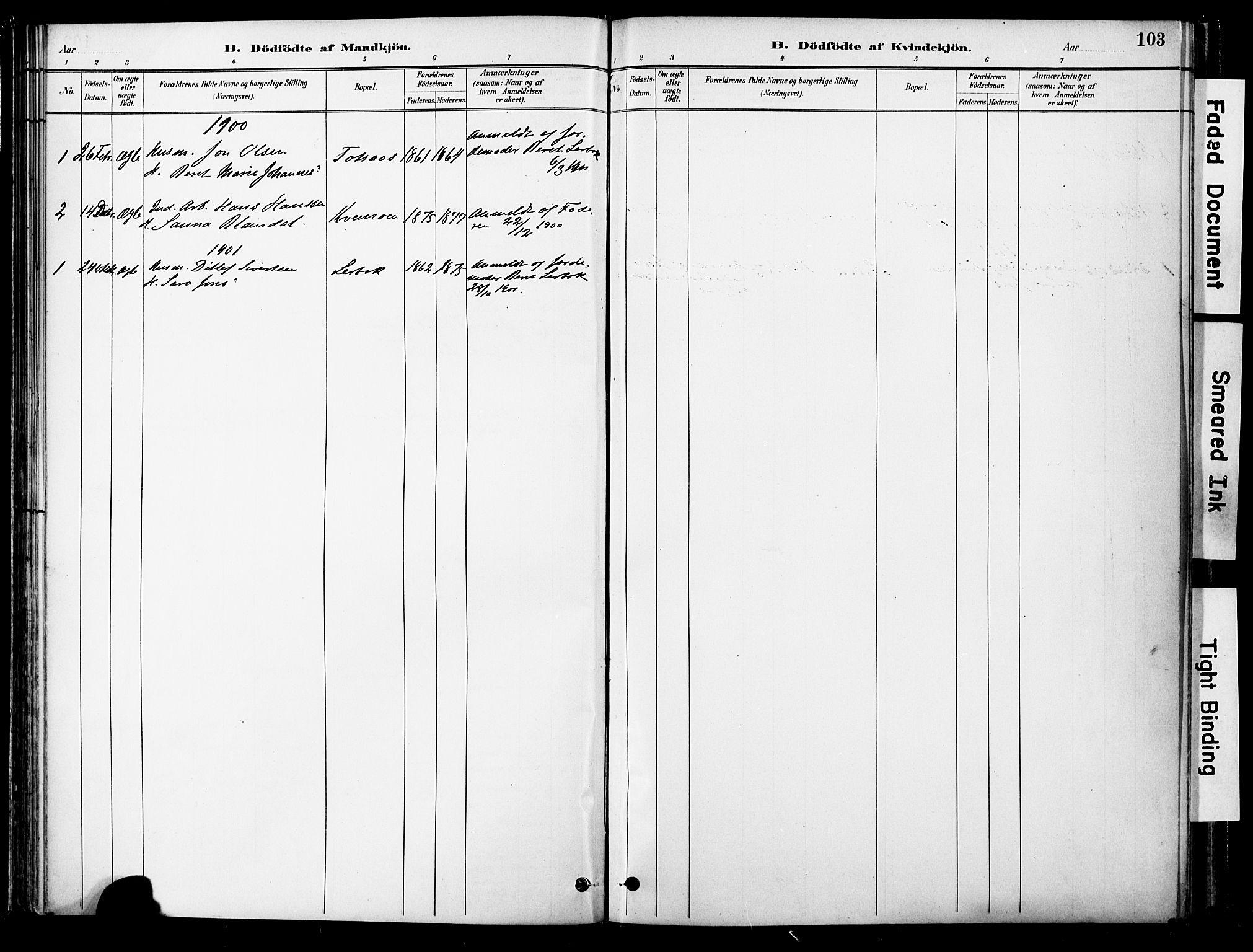 SAT, Ministerialprotokoller, klokkerbøker og fødselsregistre - Nord-Trøndelag, 755/L0494: Ministerialbok nr. 755A03, 1882-1902, s. 103