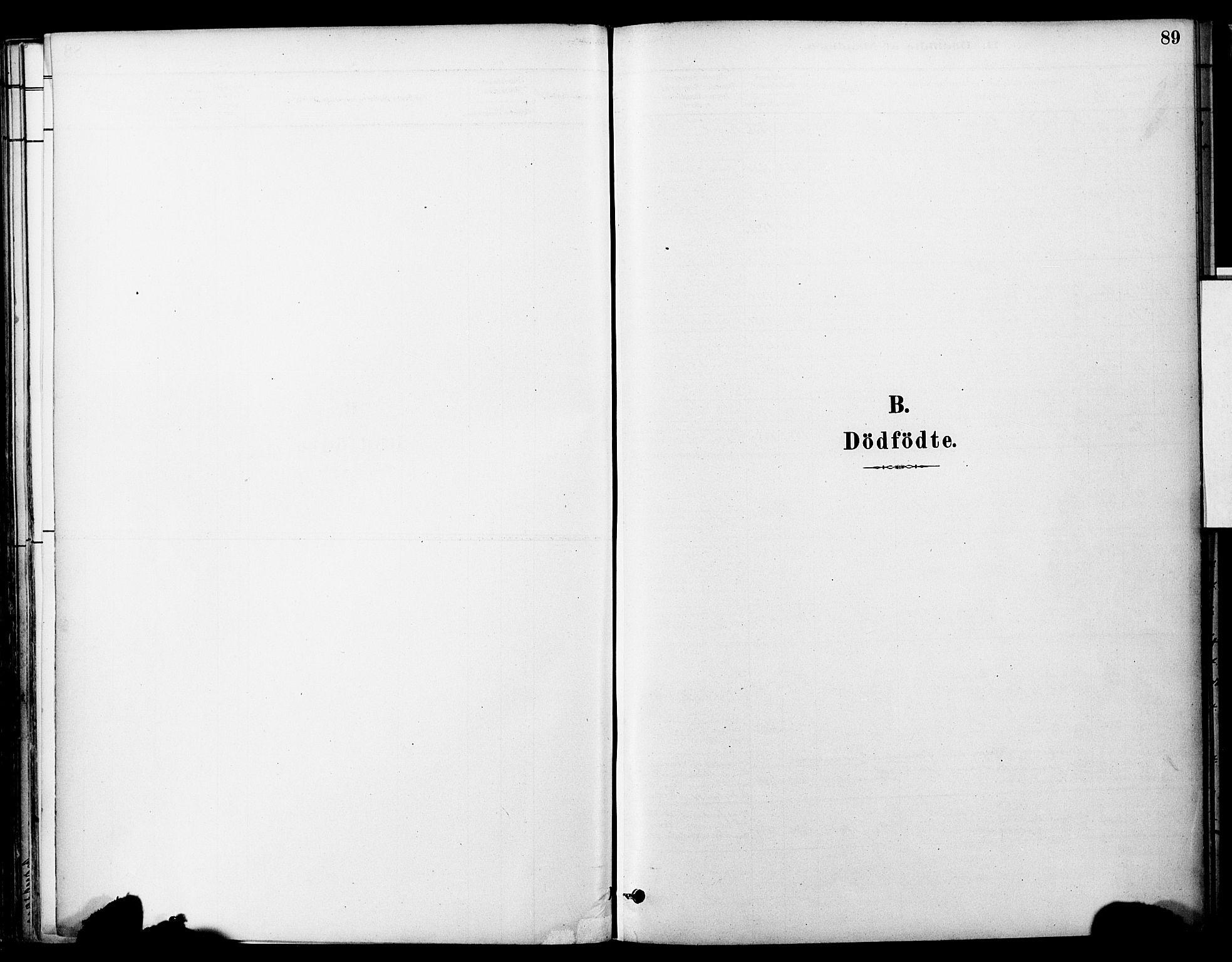 SAT, Ministerialprotokoller, klokkerbøker og fødselsregistre - Sør-Trøndelag, 681/L0933: Ministerialbok nr. 681A11, 1879-1890, s. 89