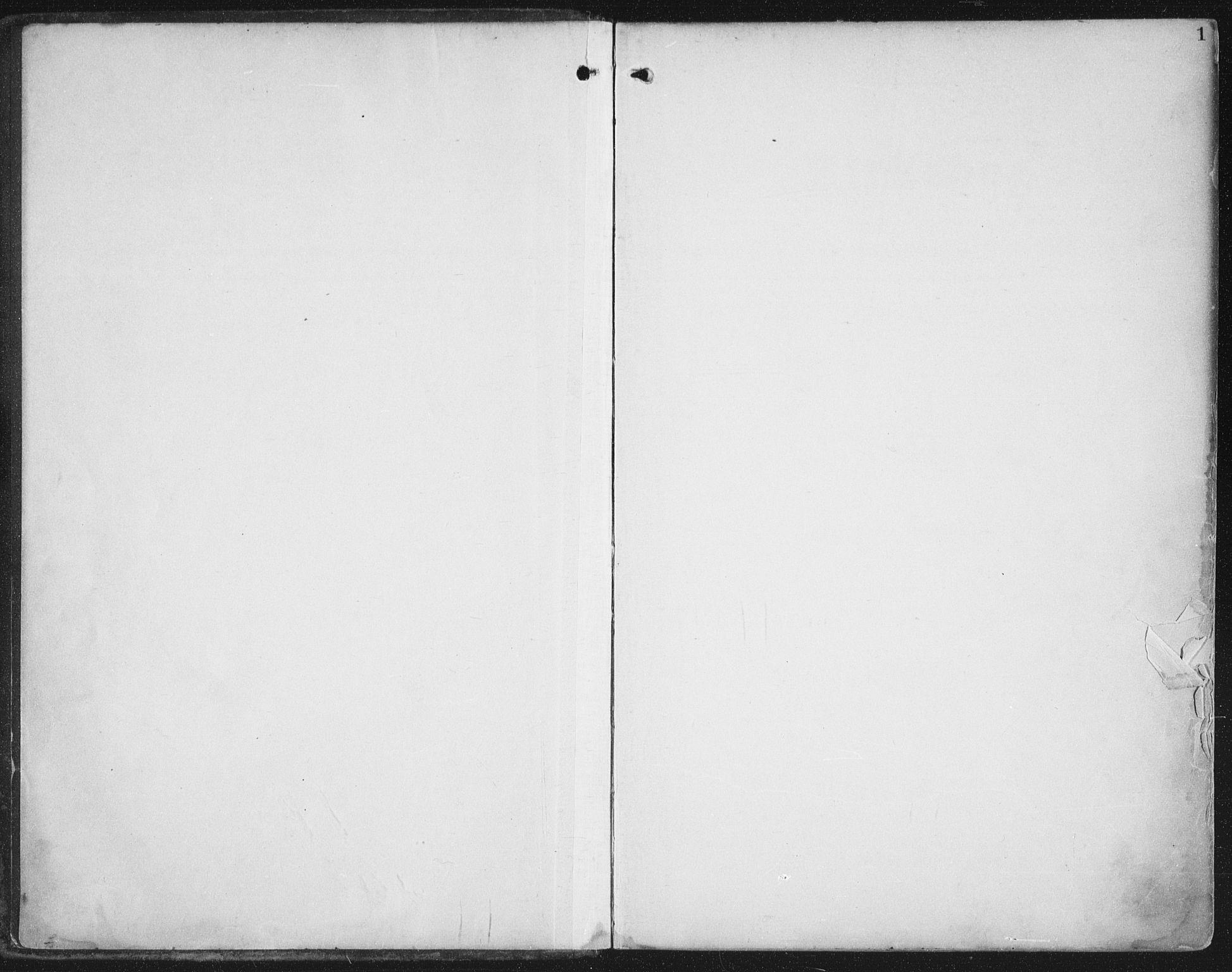 SAT, Ministerialprotokoller, klokkerbøker og fødselsregistre - Nord-Trøndelag, 786/L0688: Ministerialbok nr. 786A04, 1899-1912, s. 1