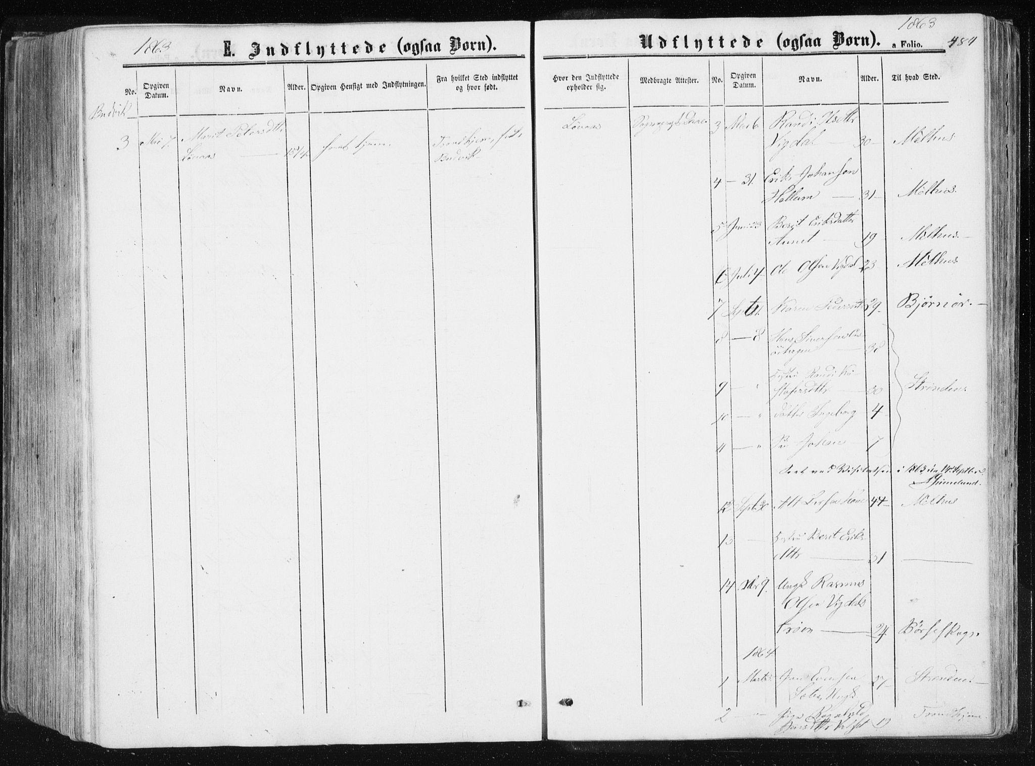 SAT, Ministerialprotokoller, klokkerbøker og fødselsregistre - Sør-Trøndelag, 612/L0377: Ministerialbok nr. 612A09, 1859-1877, s. 484