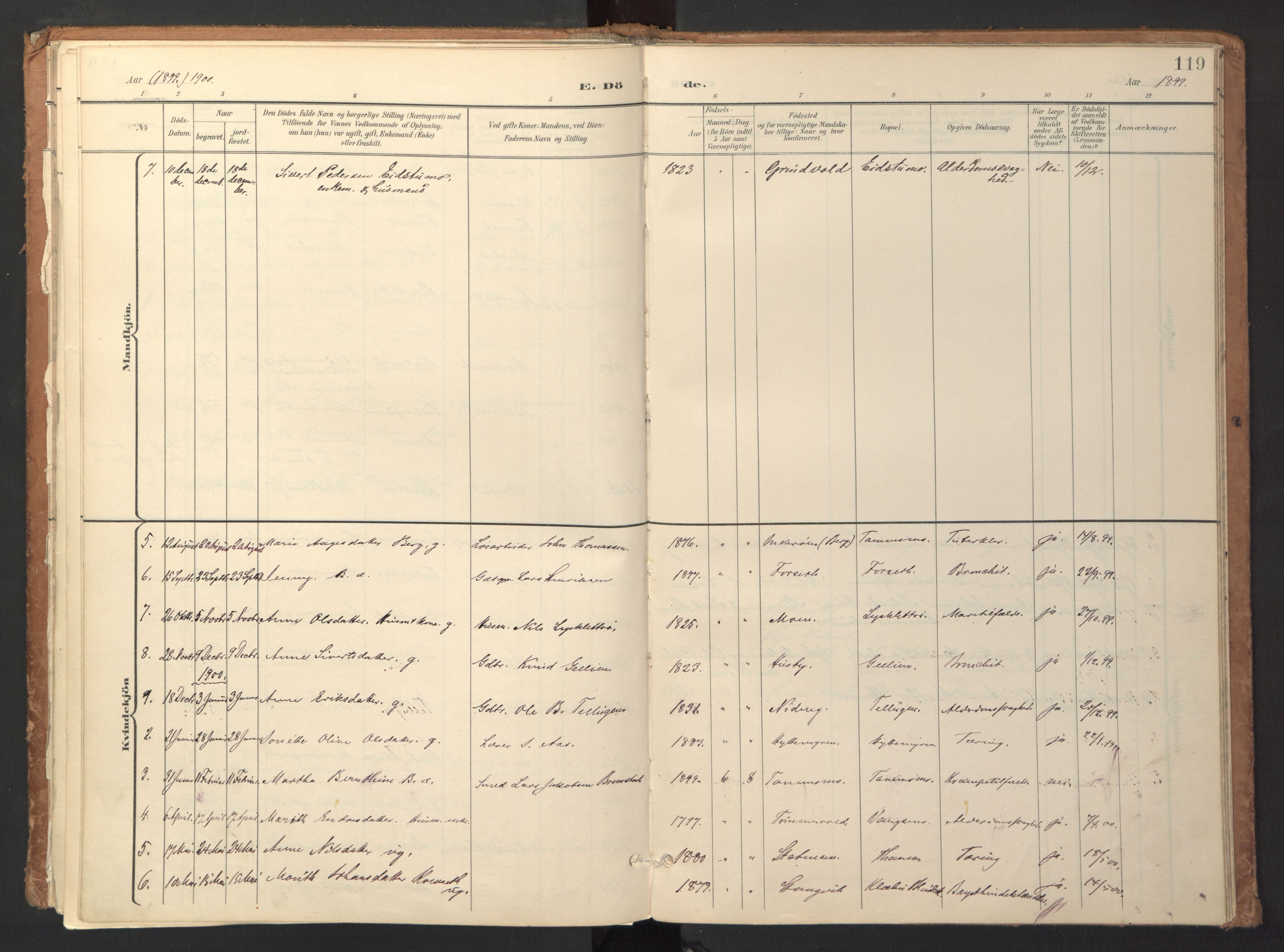 SAT, Ministerialprotokoller, klokkerbøker og fødselsregistre - Sør-Trøndelag, 618/L0448: Ministerialbok nr. 618A11, 1898-1916, s. 119