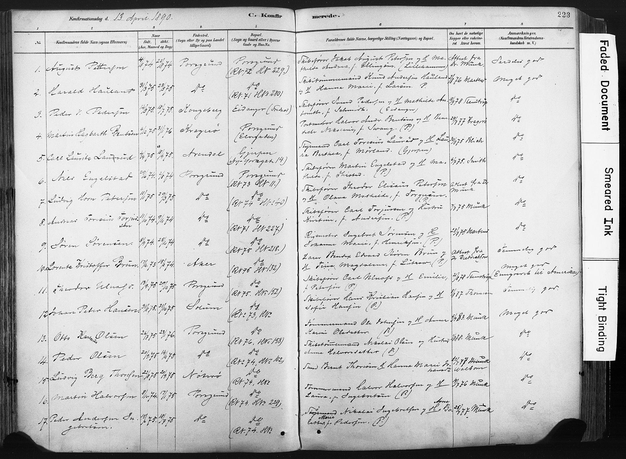 SAKO, Porsgrunn kirkebøker , F/Fa/L0008: Ministerialbok nr. 8, 1878-1895, s. 223