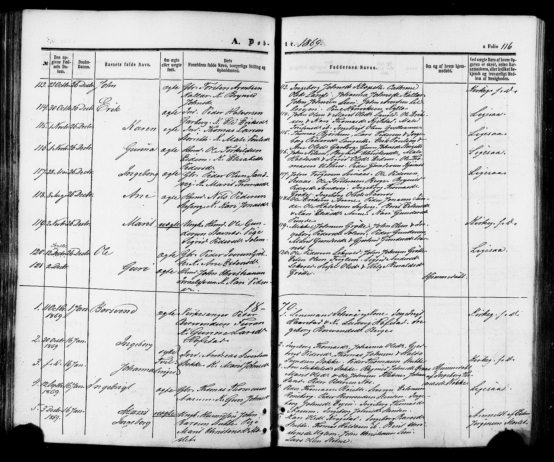 SAT, Ministerialprotokoller, klokkerbøker og fødselsregistre - Sør-Trøndelag, 695/L1147: Ministerialbok nr. 695A07, 1860-1877, s. 116