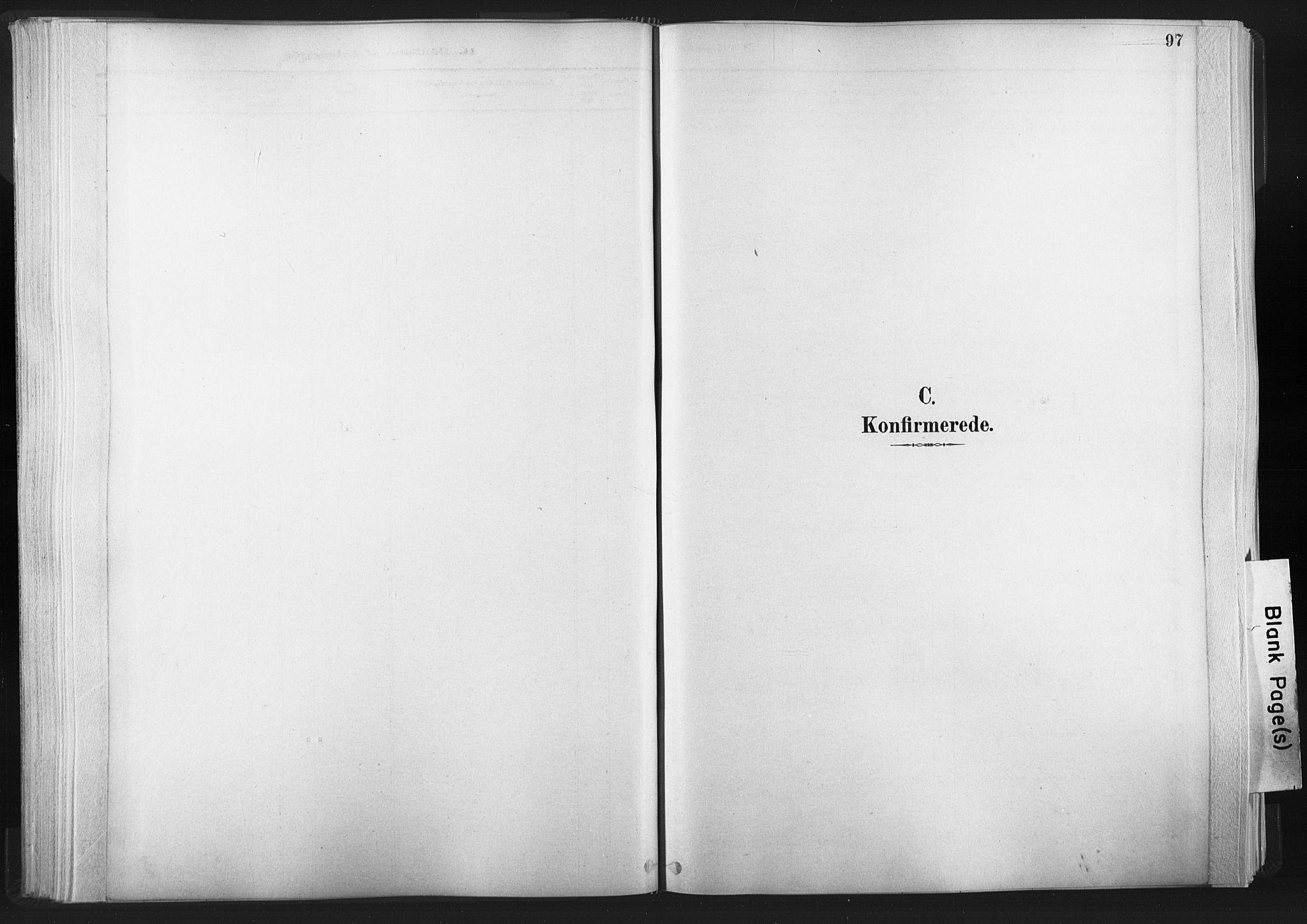 SAT, Ministerialprotokoller, klokkerbøker og fødselsregistre - Nord-Trøndelag, 749/L0474: Ministerialbok nr. 749A08, 1887-1903, s. 97