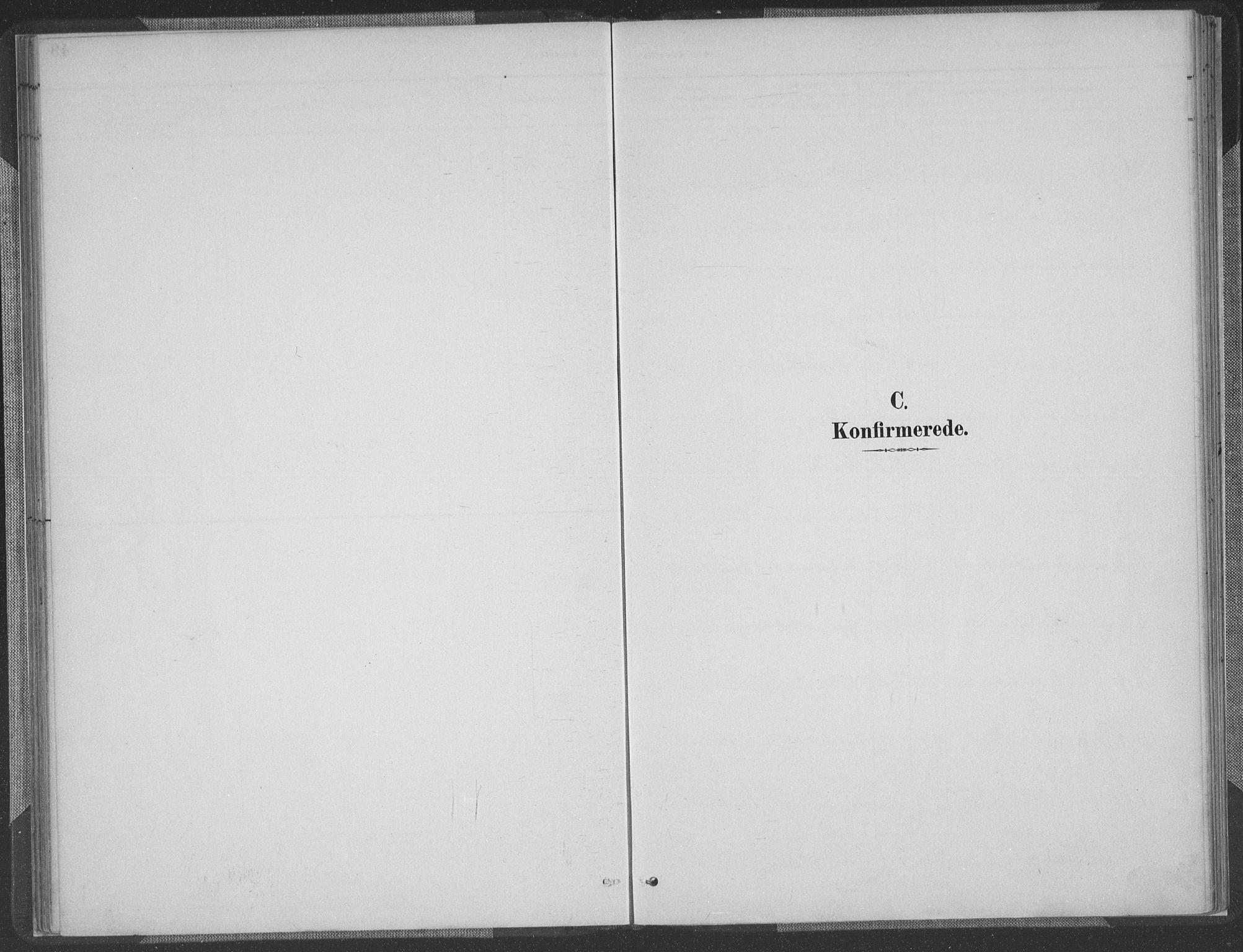 SAK, Herefoss sokneprestkontor, F/Fa/Fab/L0004: Ministerialbok nr. A 4, 1887-1909