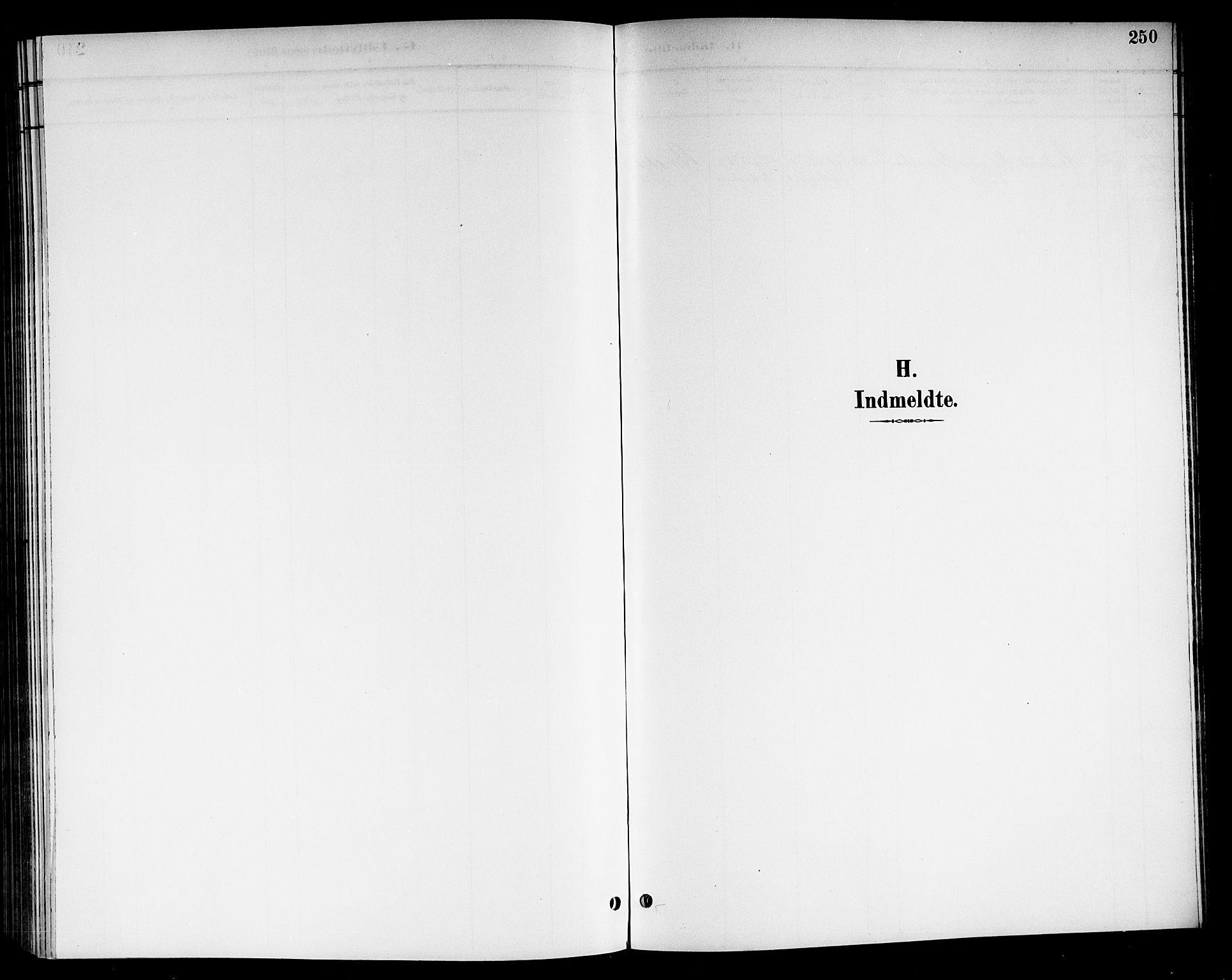 SAKO, Nore kirkebøker, G/Gb/L0003: Klokkerbok nr. II 3, 1894-1923, s. 250