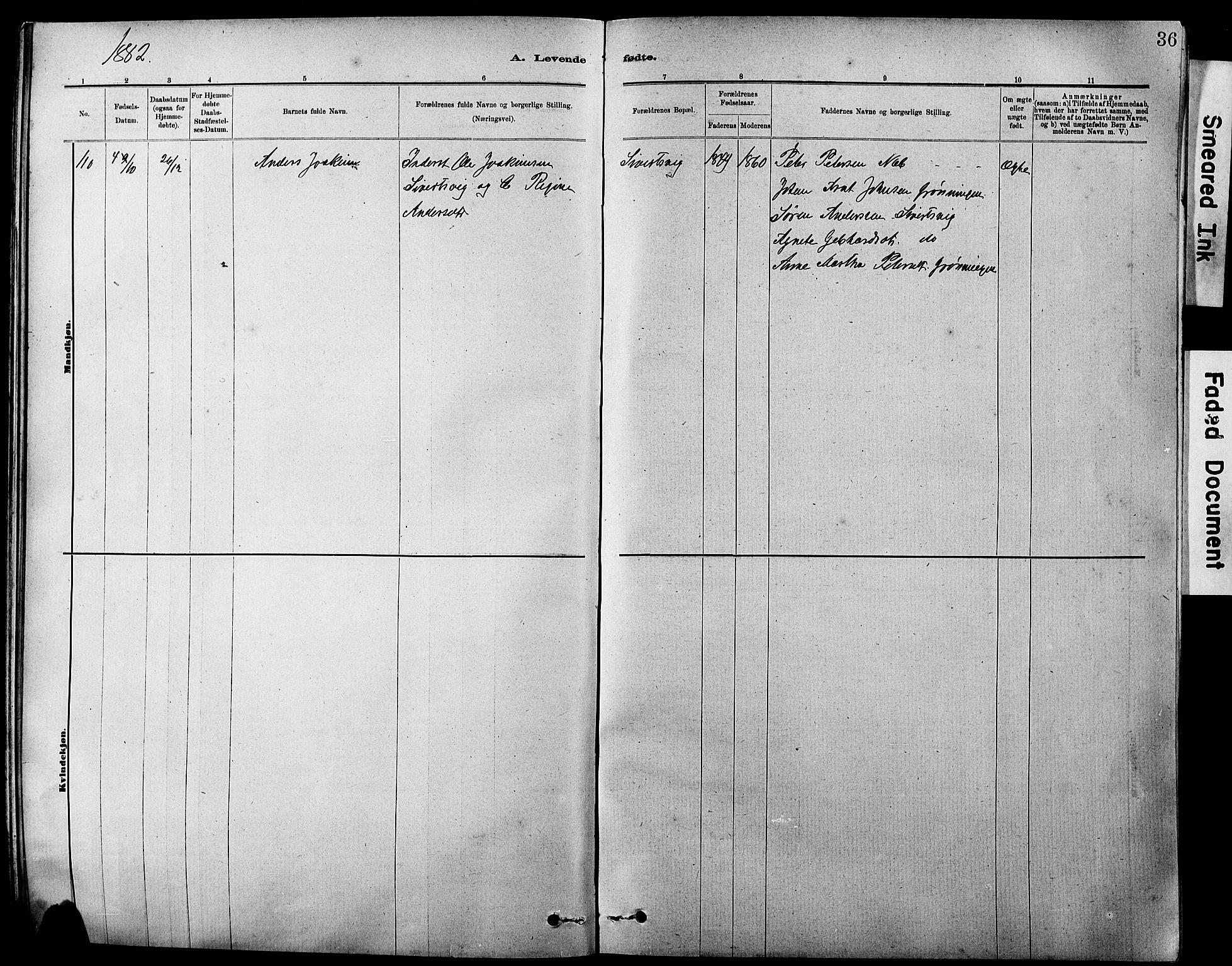 SAT, Ministerialprotokoller, klokkerbøker og fødselsregistre - Sør-Trøndelag, 647/L0636: Klokkerbok nr. 647C01, 1881-1884, s. 36
