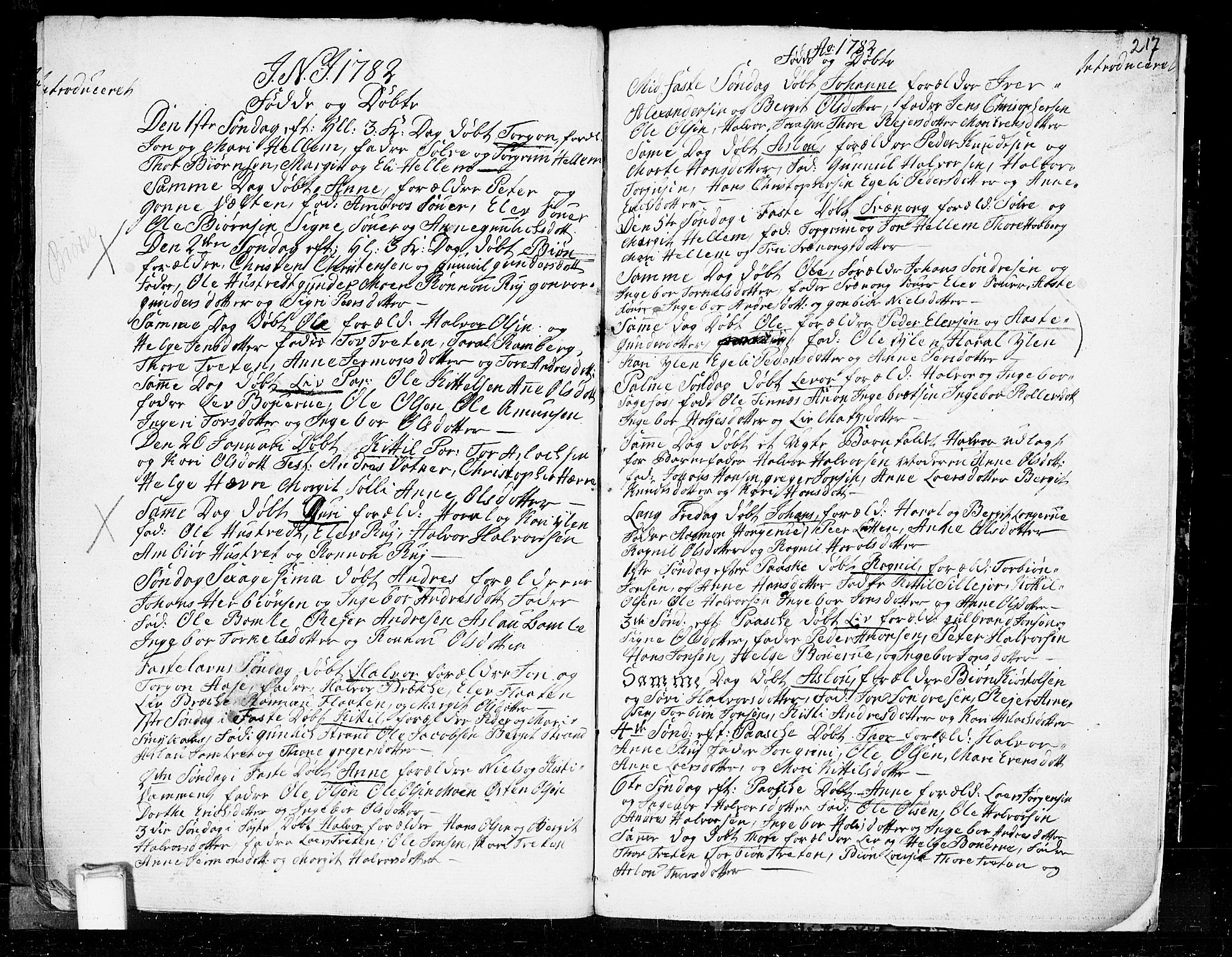 SAKO, Heddal kirkebøker, F/Fa/L0003: Ministerialbok nr. I 3, 1723-1783, s. 217