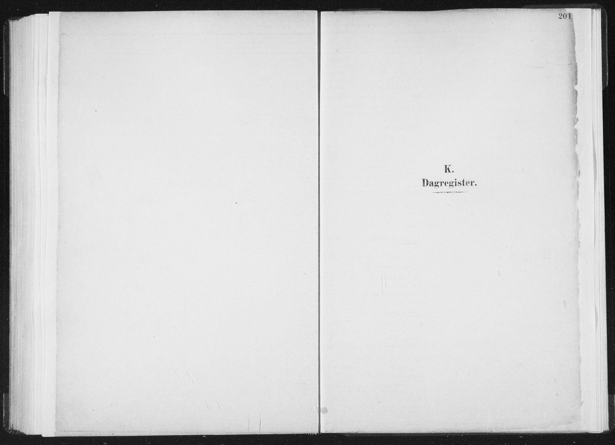 SAT, Ministerialprotokoller, klokkerbøker og fødselsregistre - Nord-Trøndelag, 771/L0597: Ministerialbok nr. 771A04, 1885-1910, s. 201