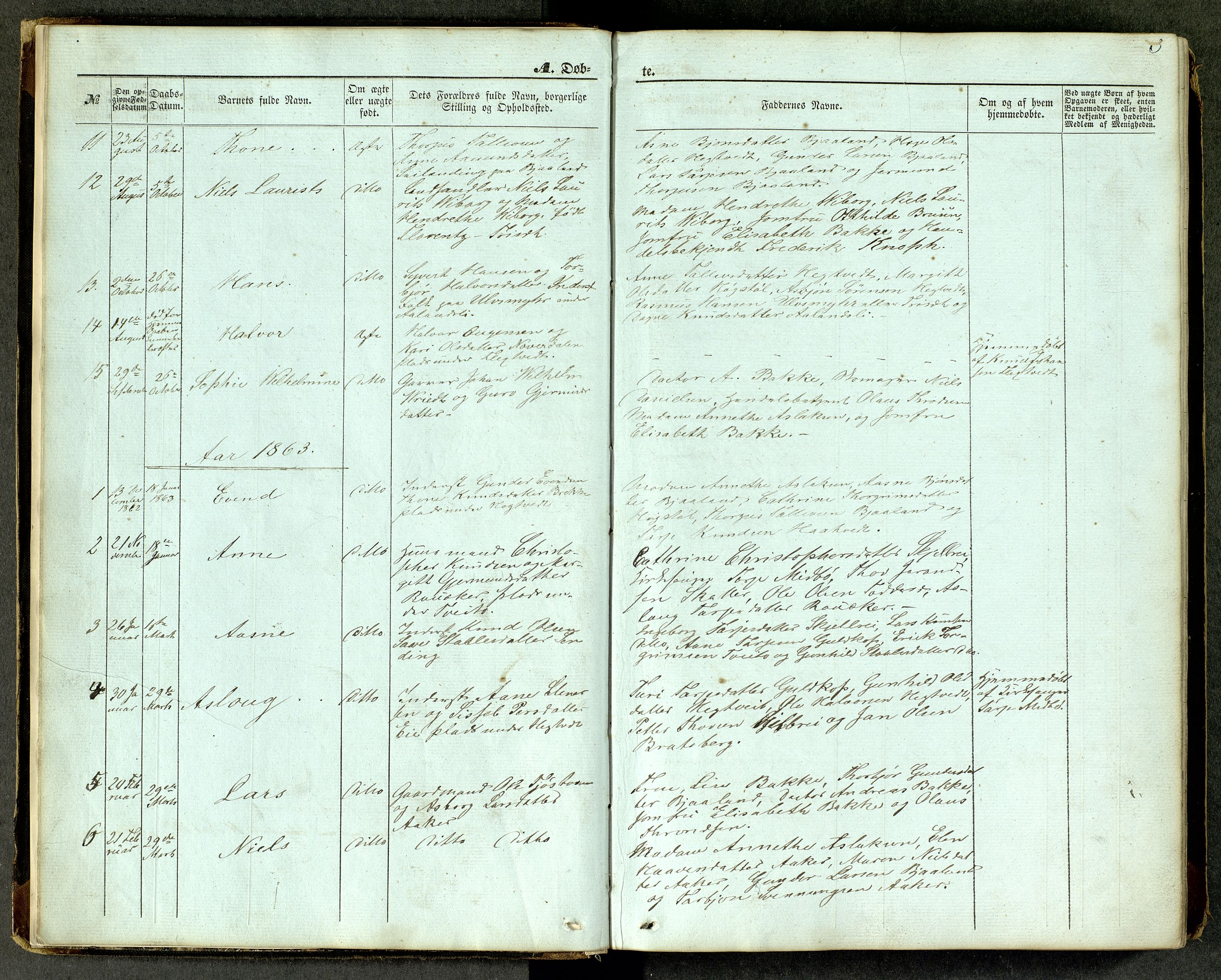 SAKO, Lårdal kirkebøker, G/Ga/L0002: Klokkerbok nr. I 2, 1861-1890, s. 3