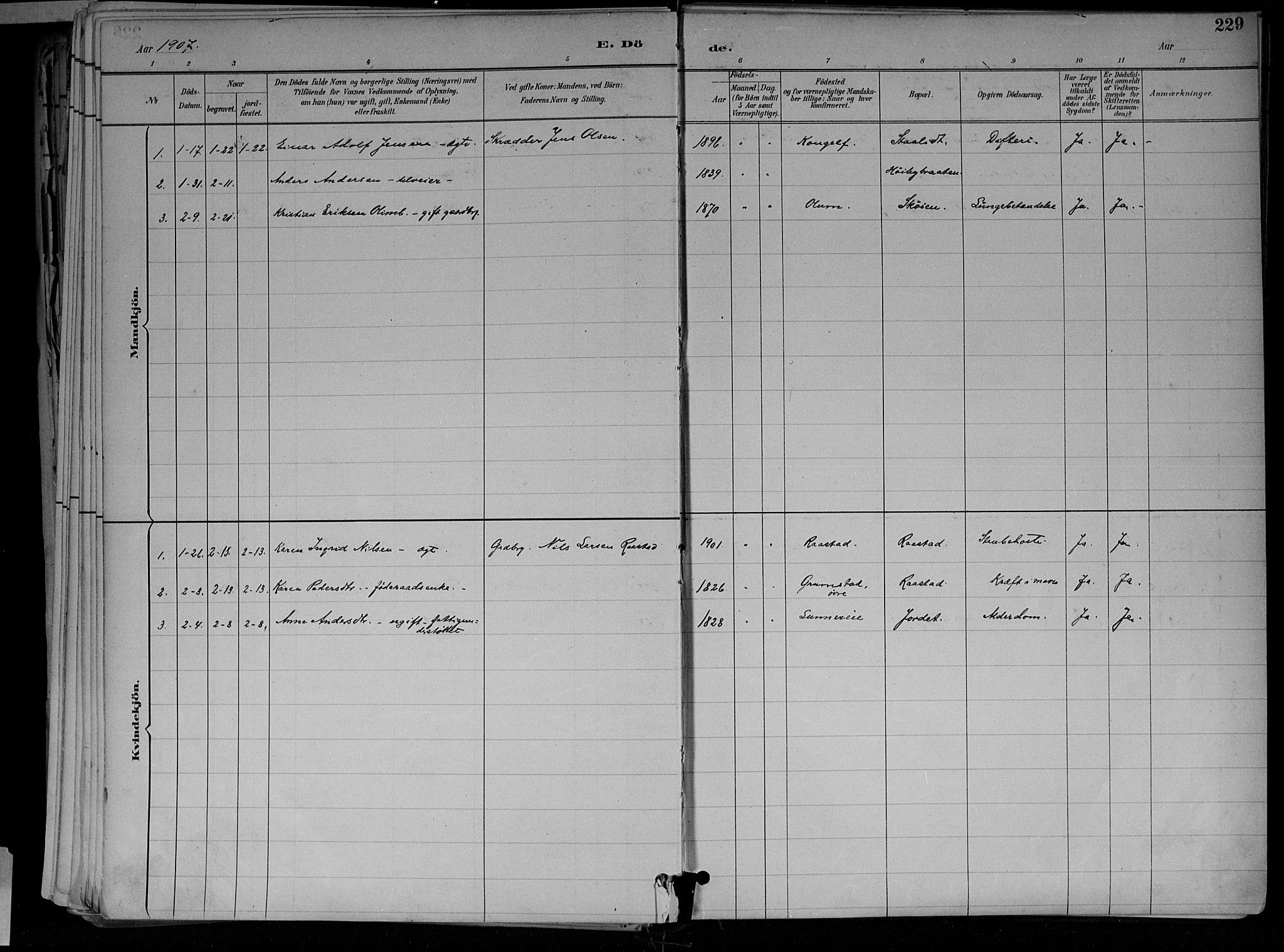 SAH, Jevnaker prestekontor, Ministerialbok nr. 10, 1891-1906, s. 229
