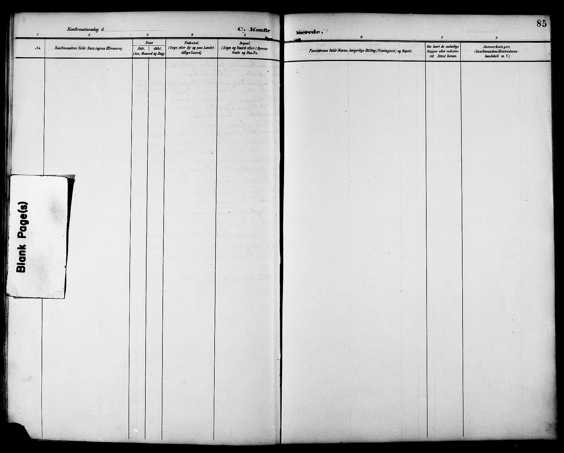 SAT, Ministerialprotokoller, klokkerbøker og fødselsregistre - Sør-Trøndelag, 692/L1111: Klokkerbok nr. 692C06, 1890-1904, s. 85