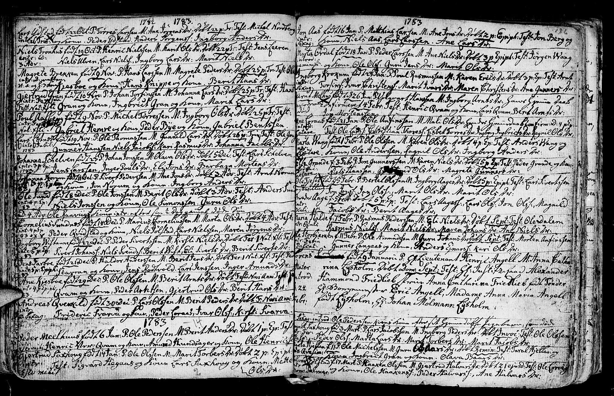SAT, Ministerialprotokoller, klokkerbøker og fødselsregistre - Nord-Trøndelag, 730/L0273: Ministerialbok nr. 730A02, 1762-1802, s. 136